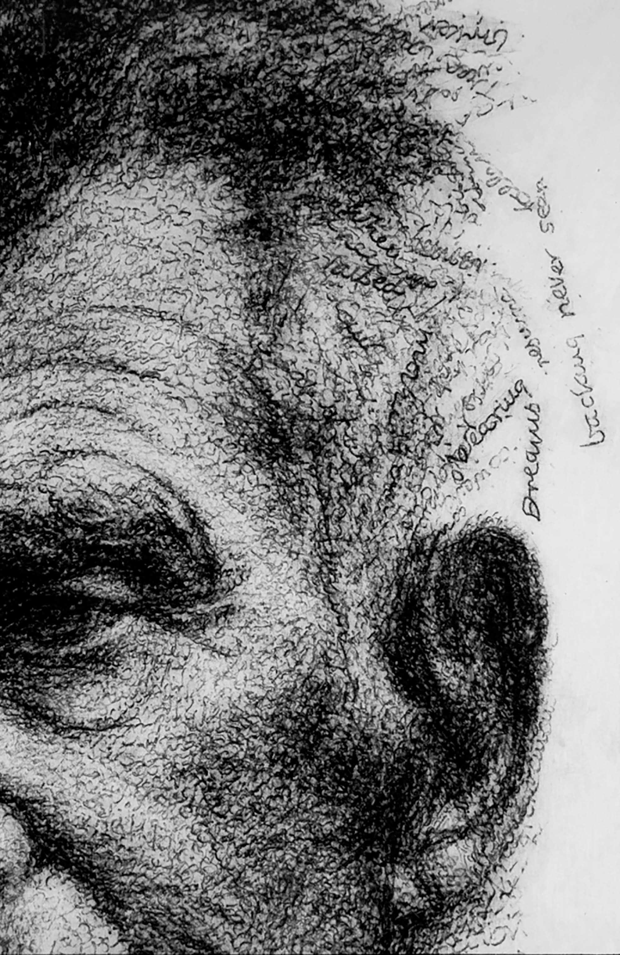 BECKETT IN HIS OWN WORDS     (detail)   2000 H45, W35 cm Japanese paper, graphite Private collection