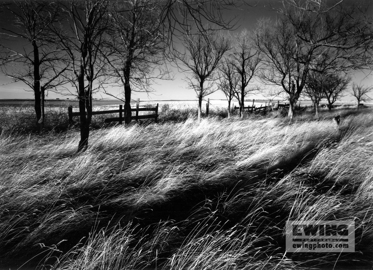 Desertes Ranch Pawnee Grasslands, Colorado