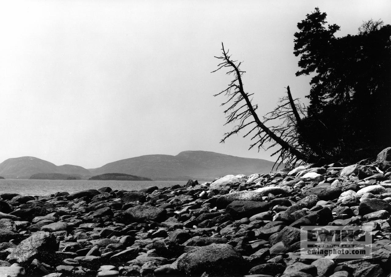 Acadia Mountains from Thrumcap Acadia National Park, Maine