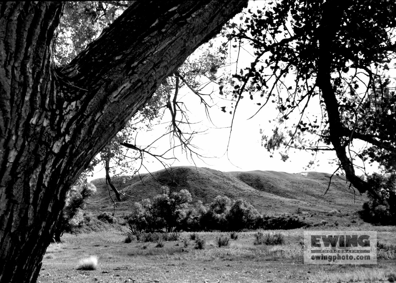 School Creek Rd Thunder Basin Nat'l Grasslands, Wyoming