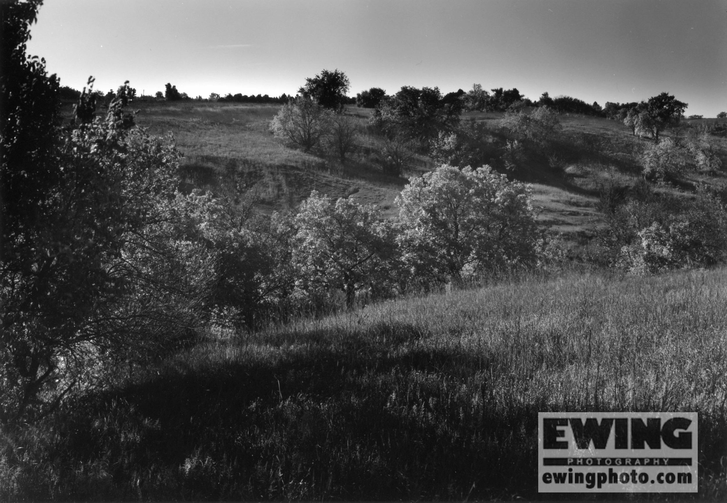 The Land Institute, Hagg Property, Salina, KS