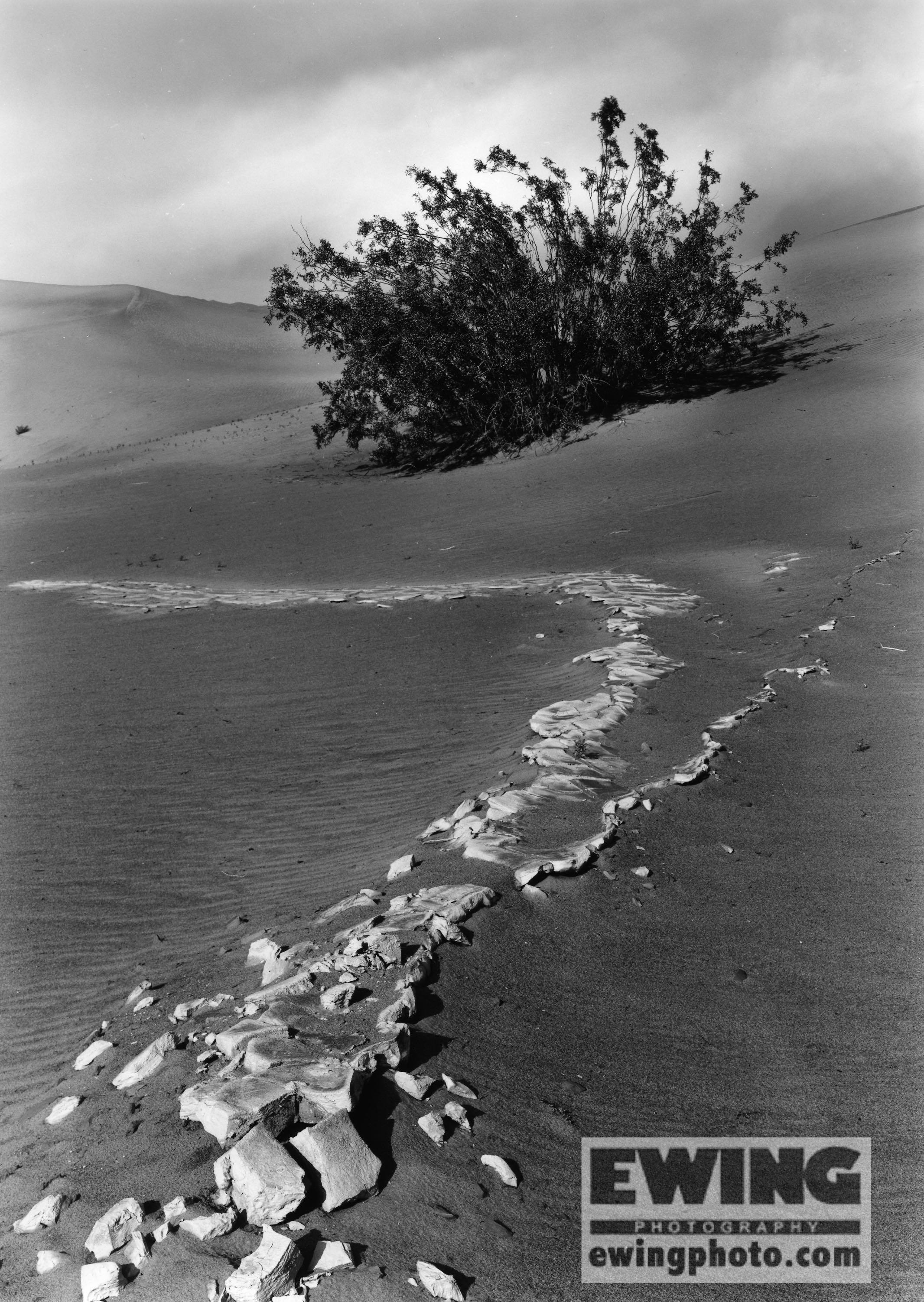 Mesquite Flat Sand Dunes Death Valley California