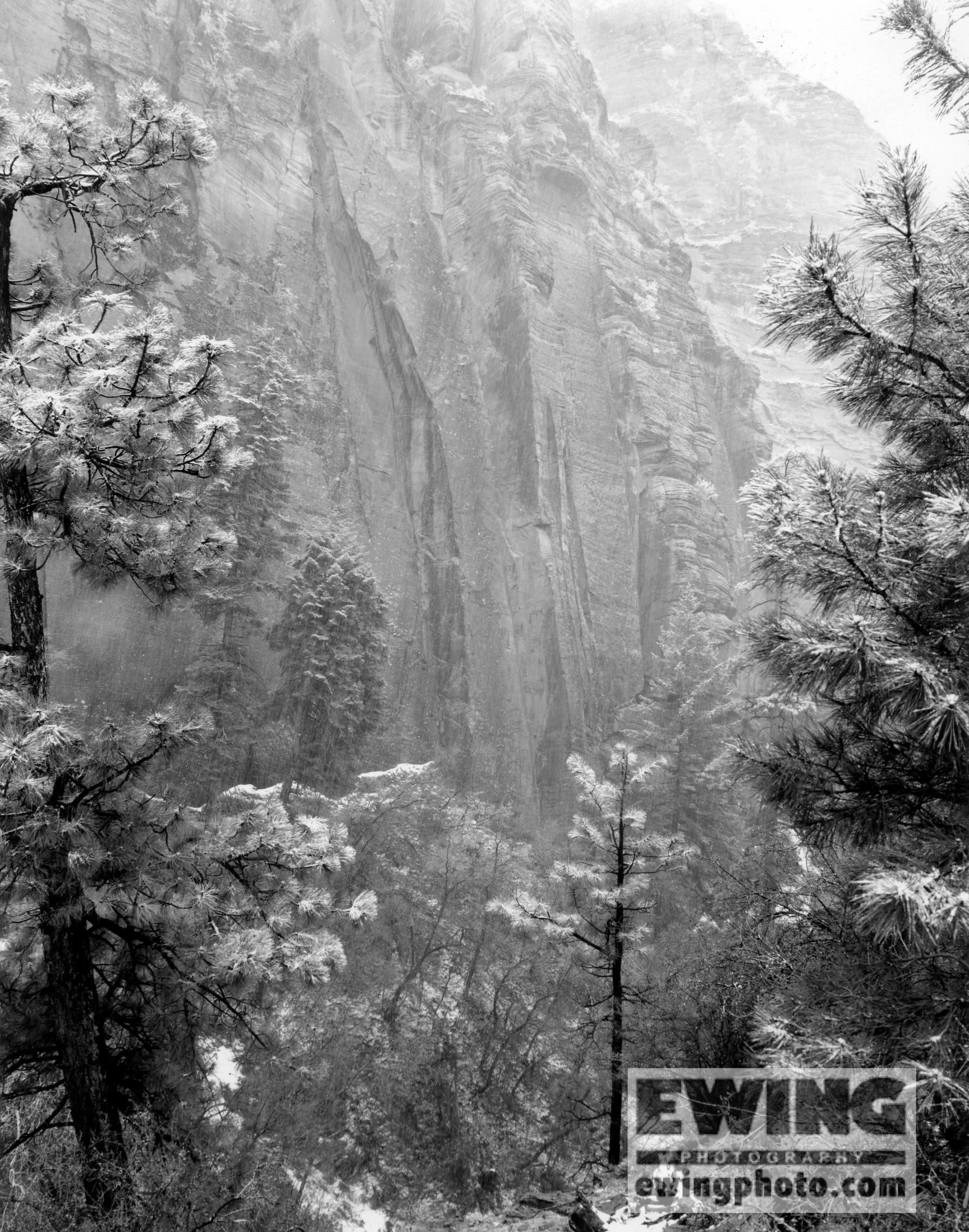 Spring Snow Zion National Park Utah