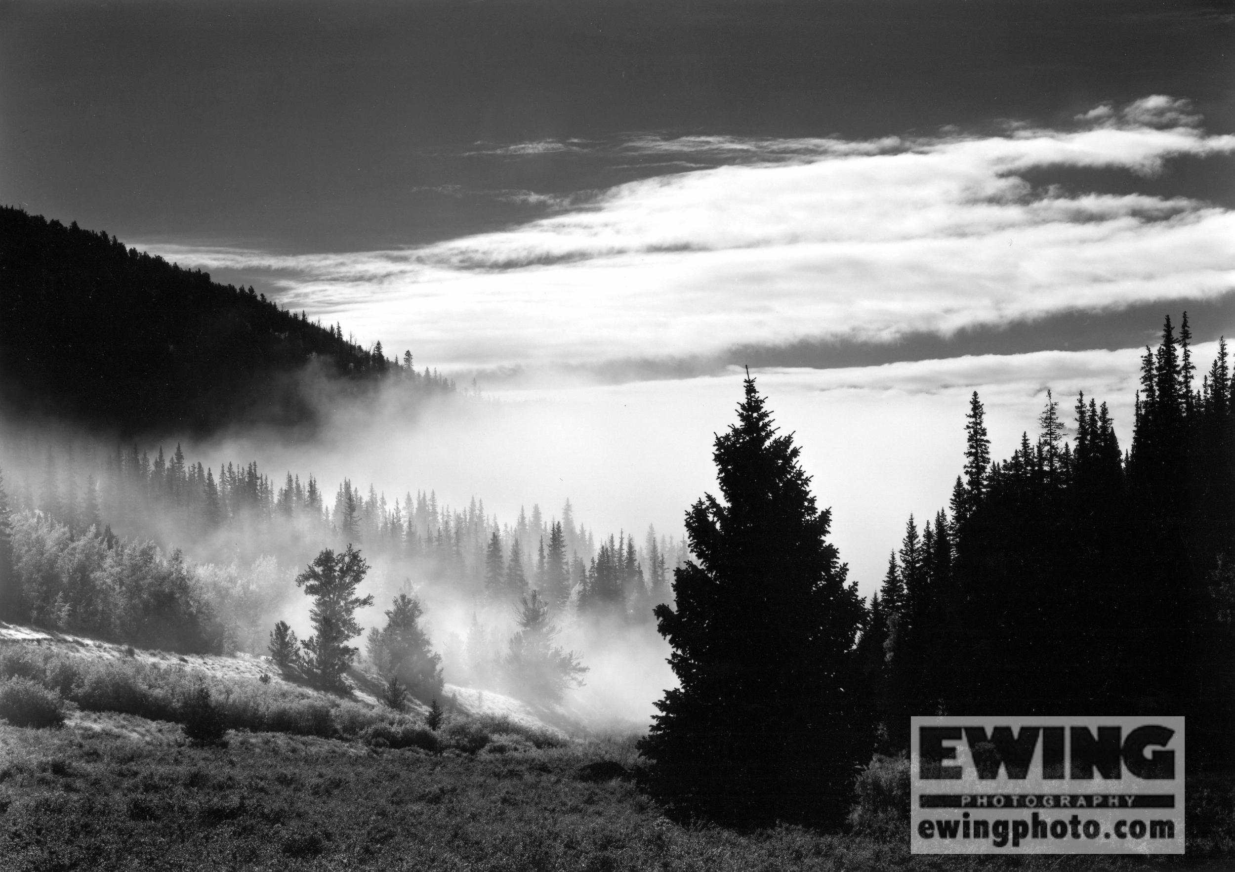 Willow Creek, Rio Grande National Forest Creede, Colorado