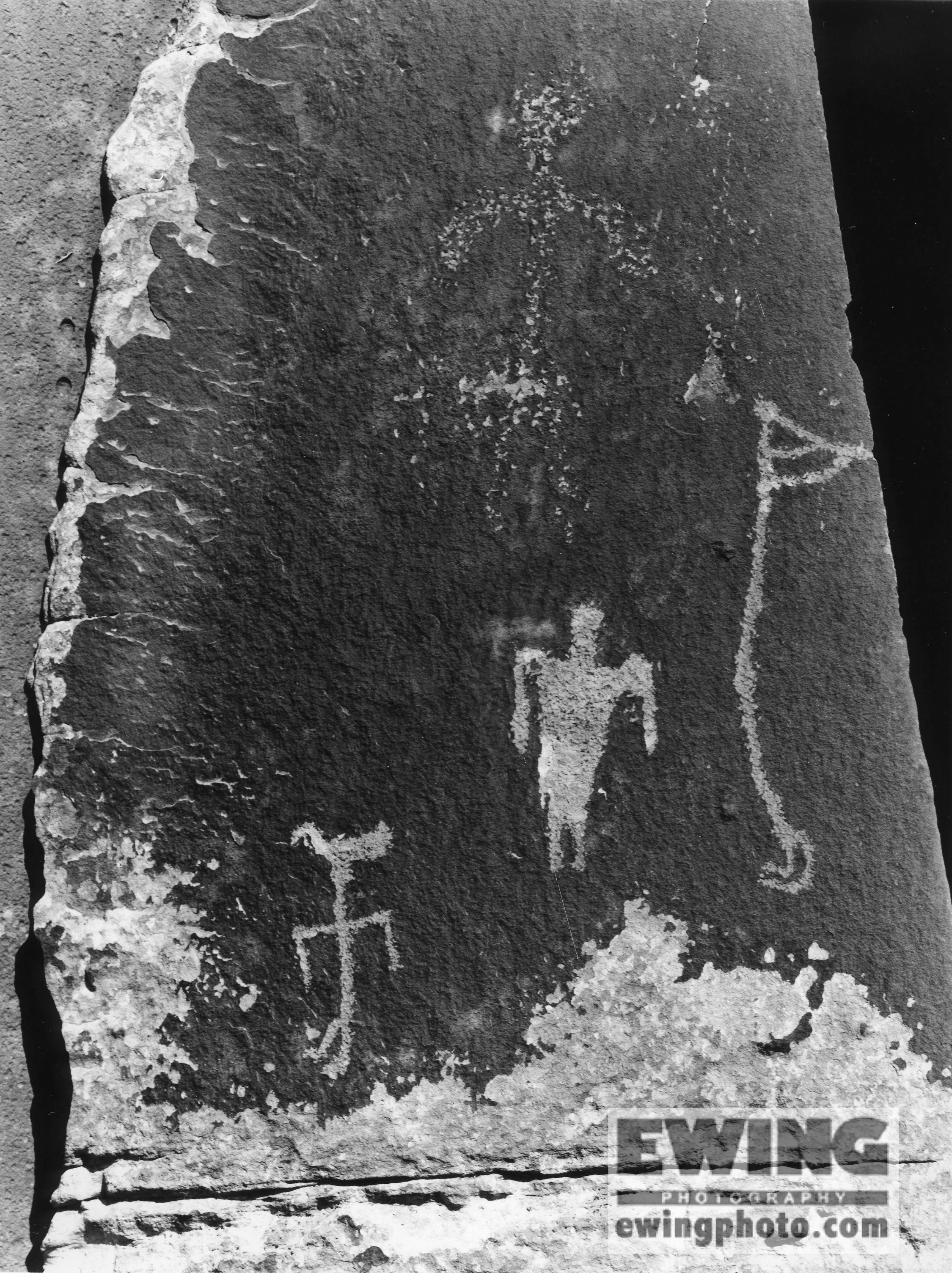 Petroglyphs. Cedar Mesa Muley Point,  Utah