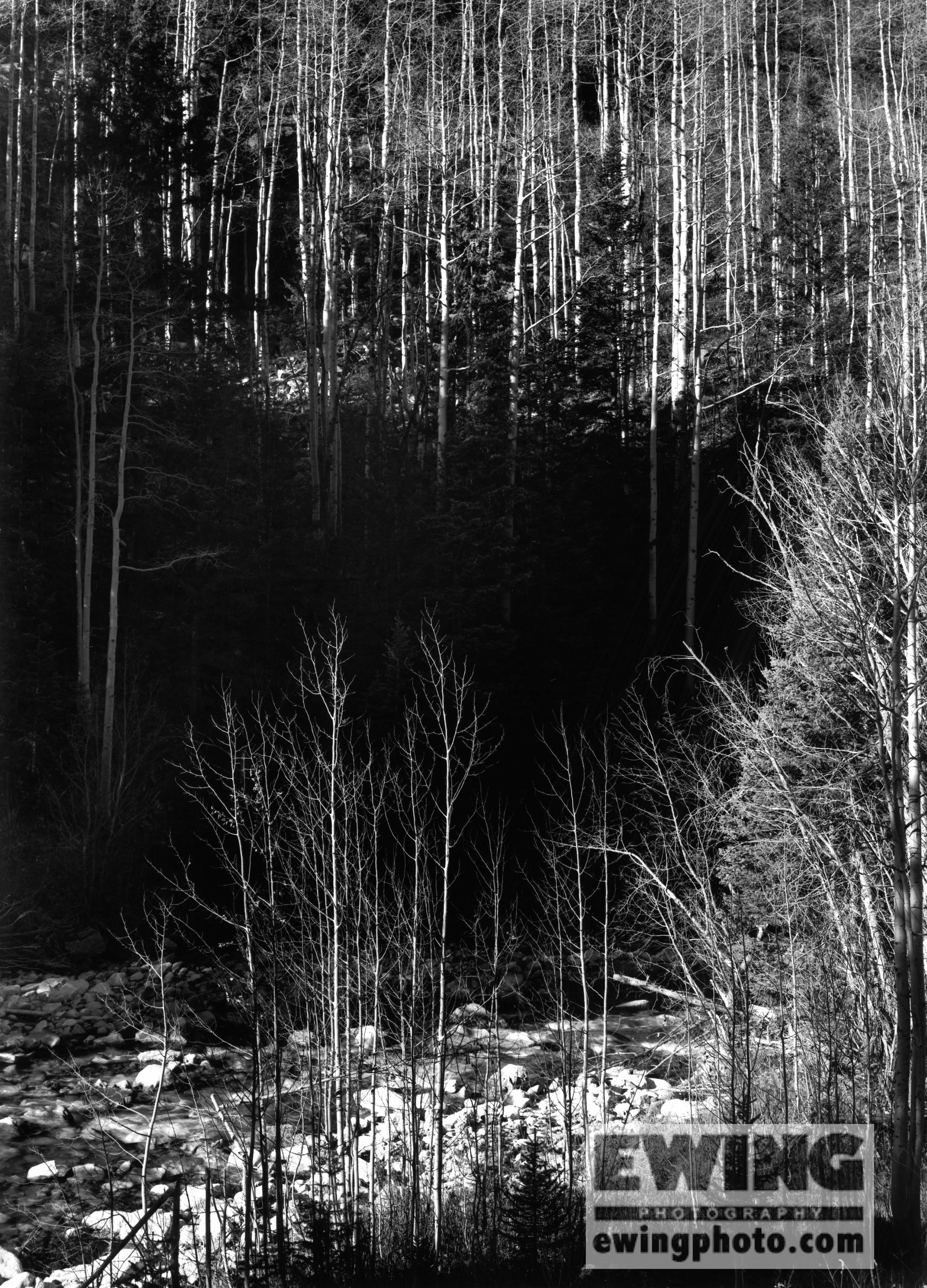 Crystal River Crystal, Colorado