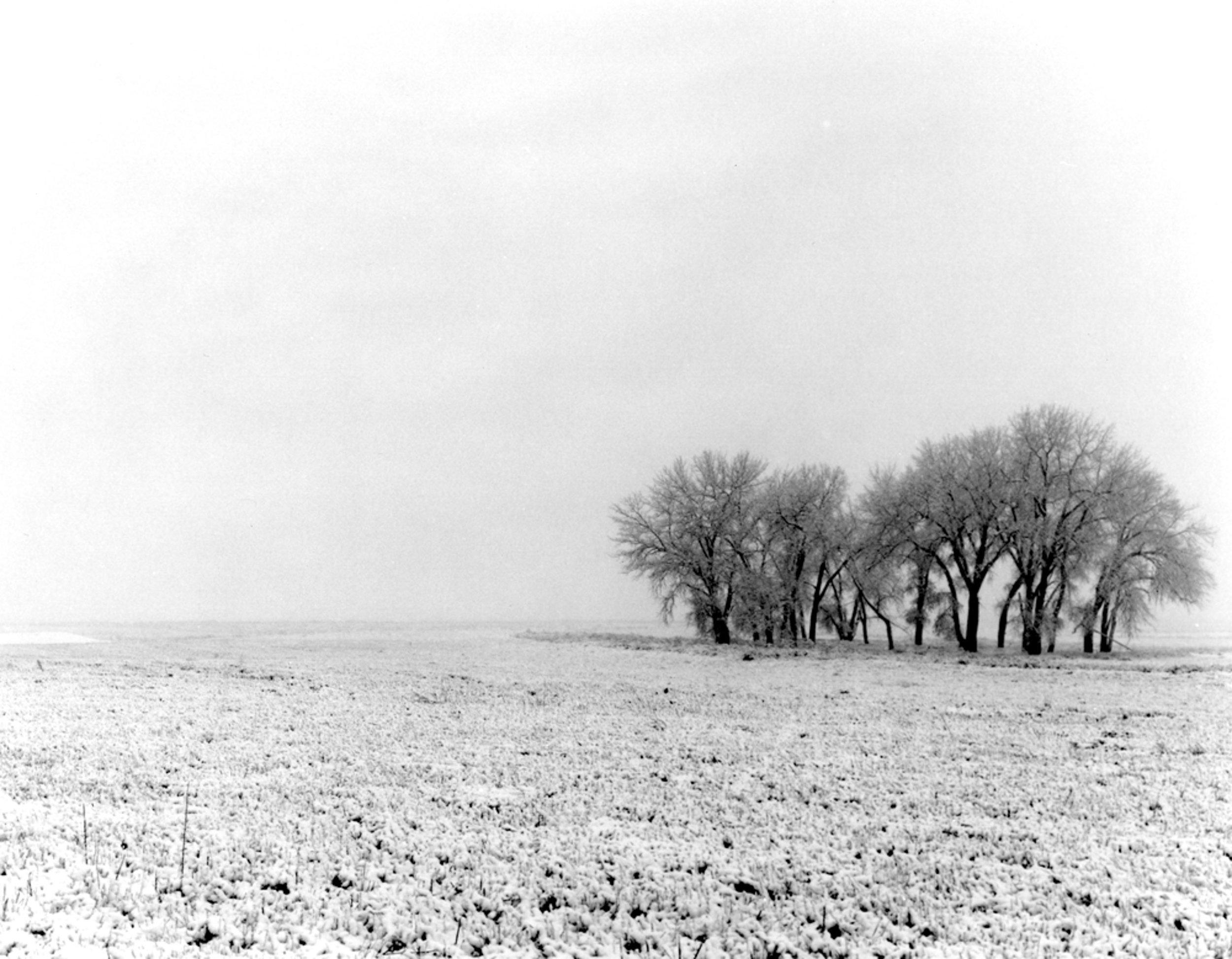 North of Fort Morgan off Route 52 Colorado