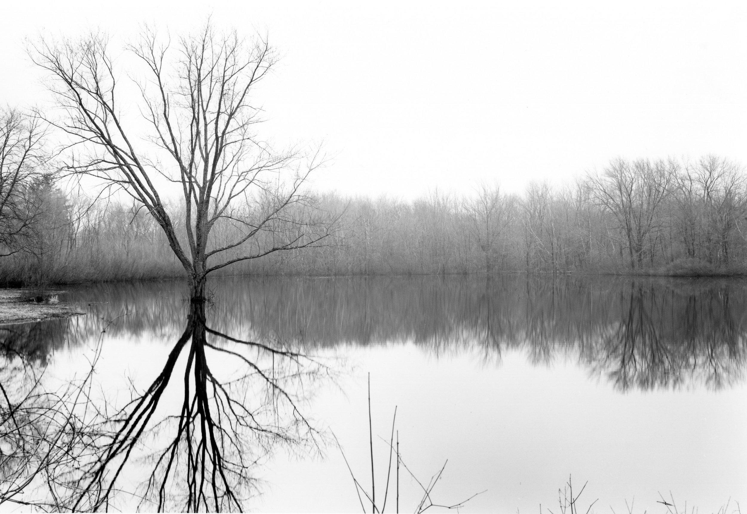 Calf Pasture Lake Concord, Massachusetts