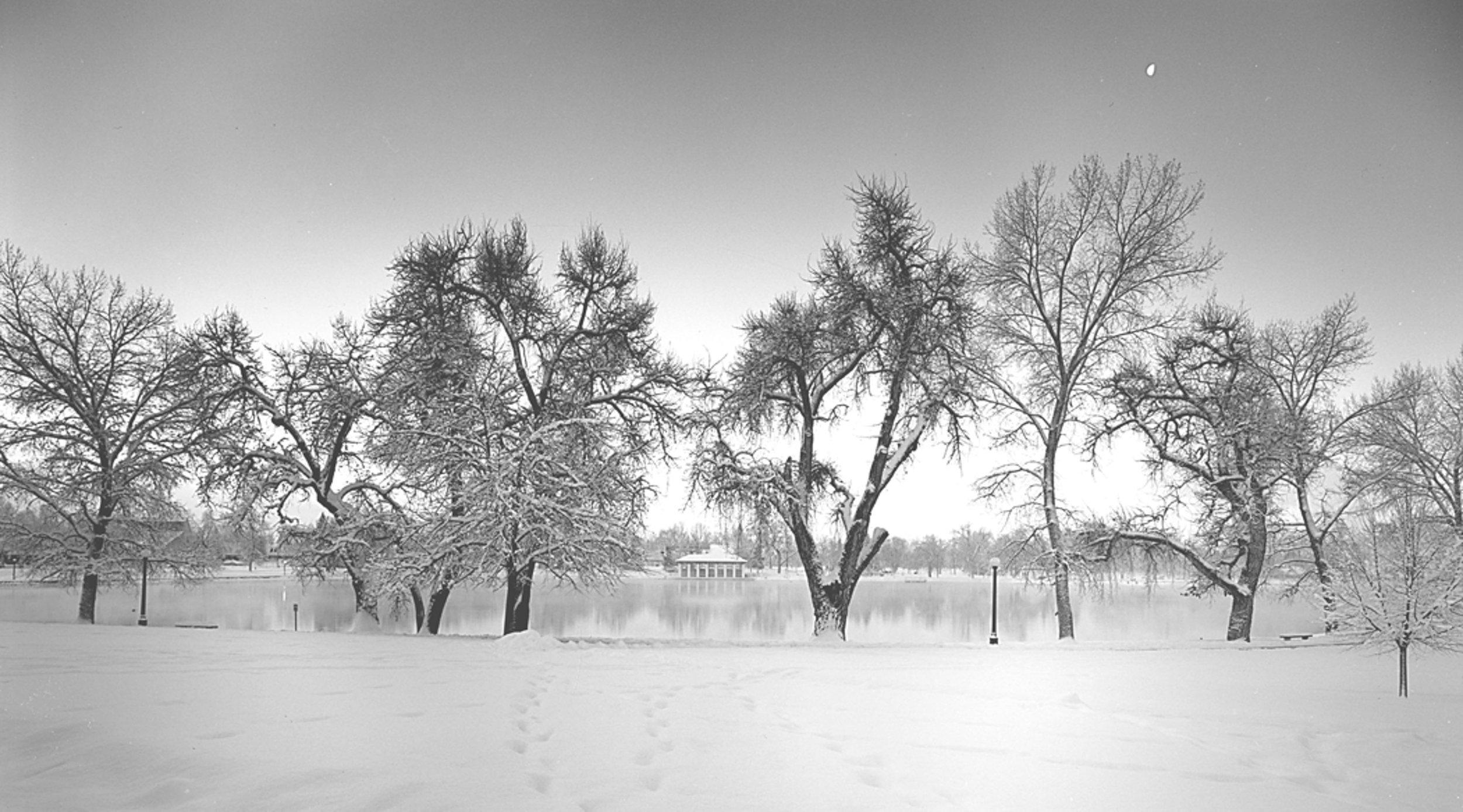 Early Morning Moon, Washington Park Denver,