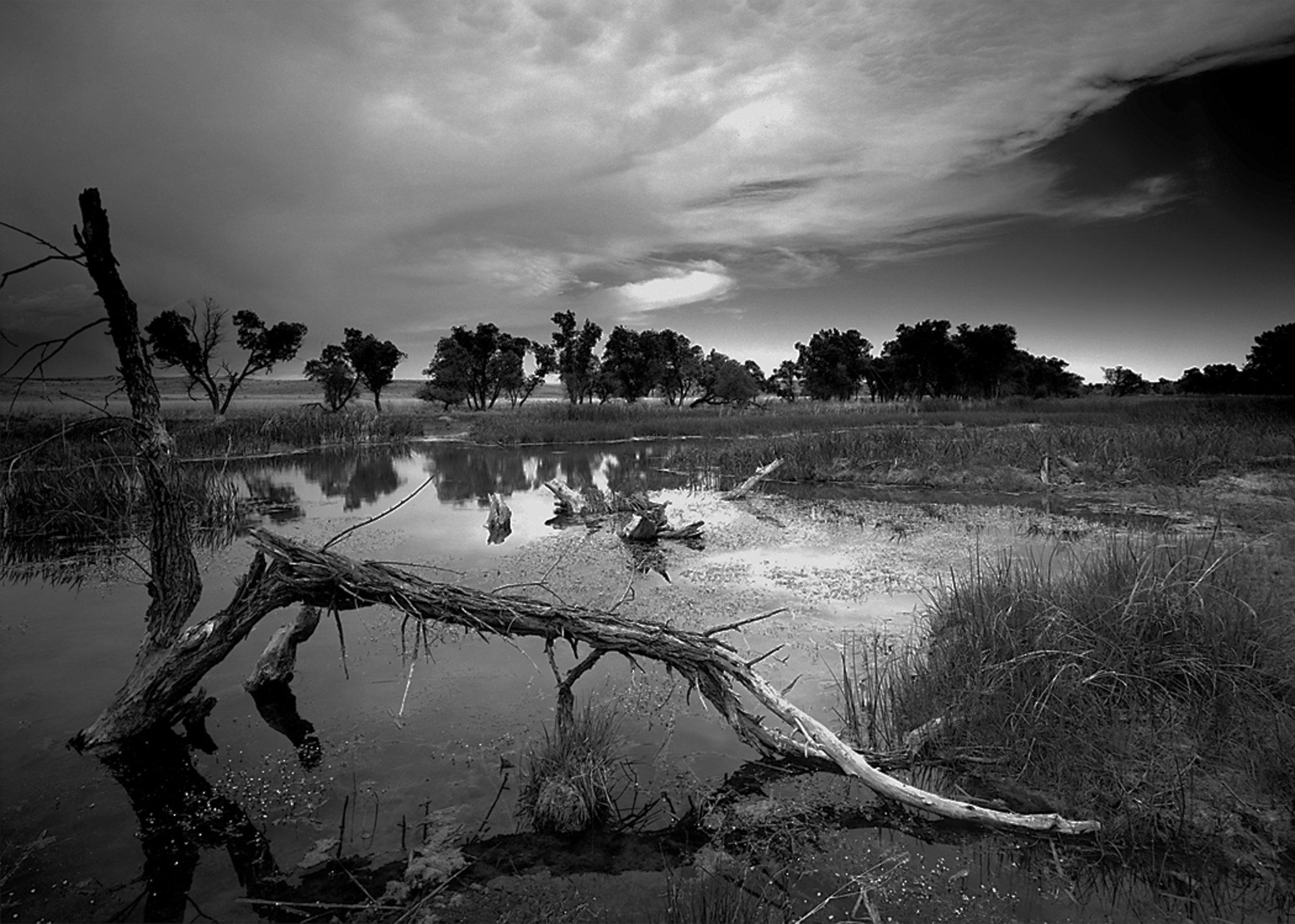 Arikaree River Colorado Grasslands