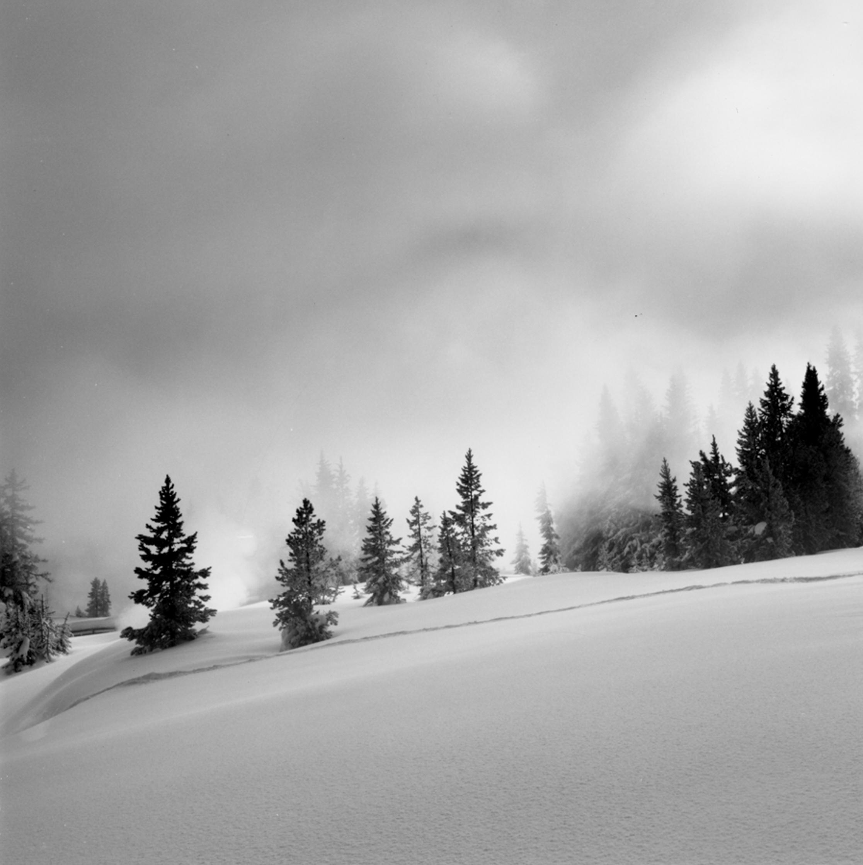 Geyser Mist, West Thumb Yellowstone