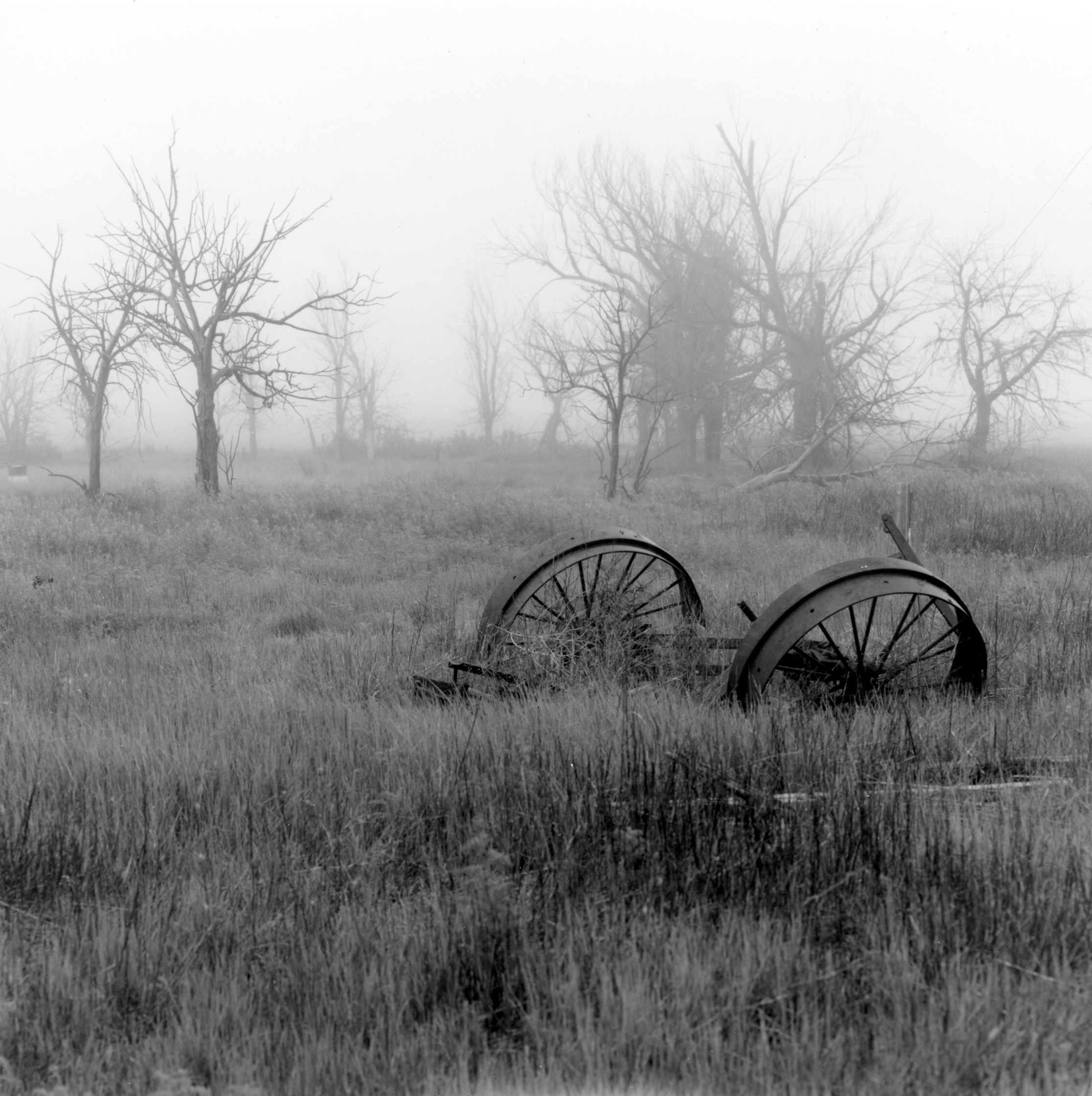 Pawnee Grass land