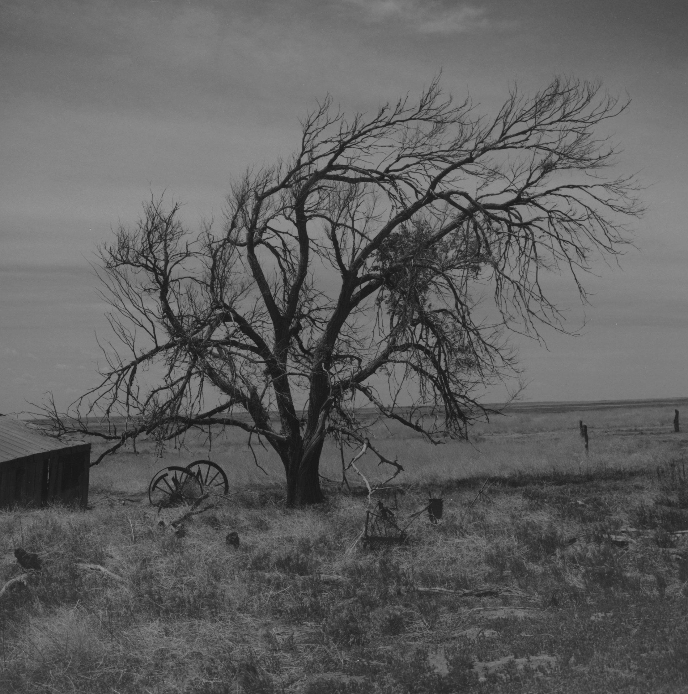 RD160, Pretchett, Colorado Comanche Grassland