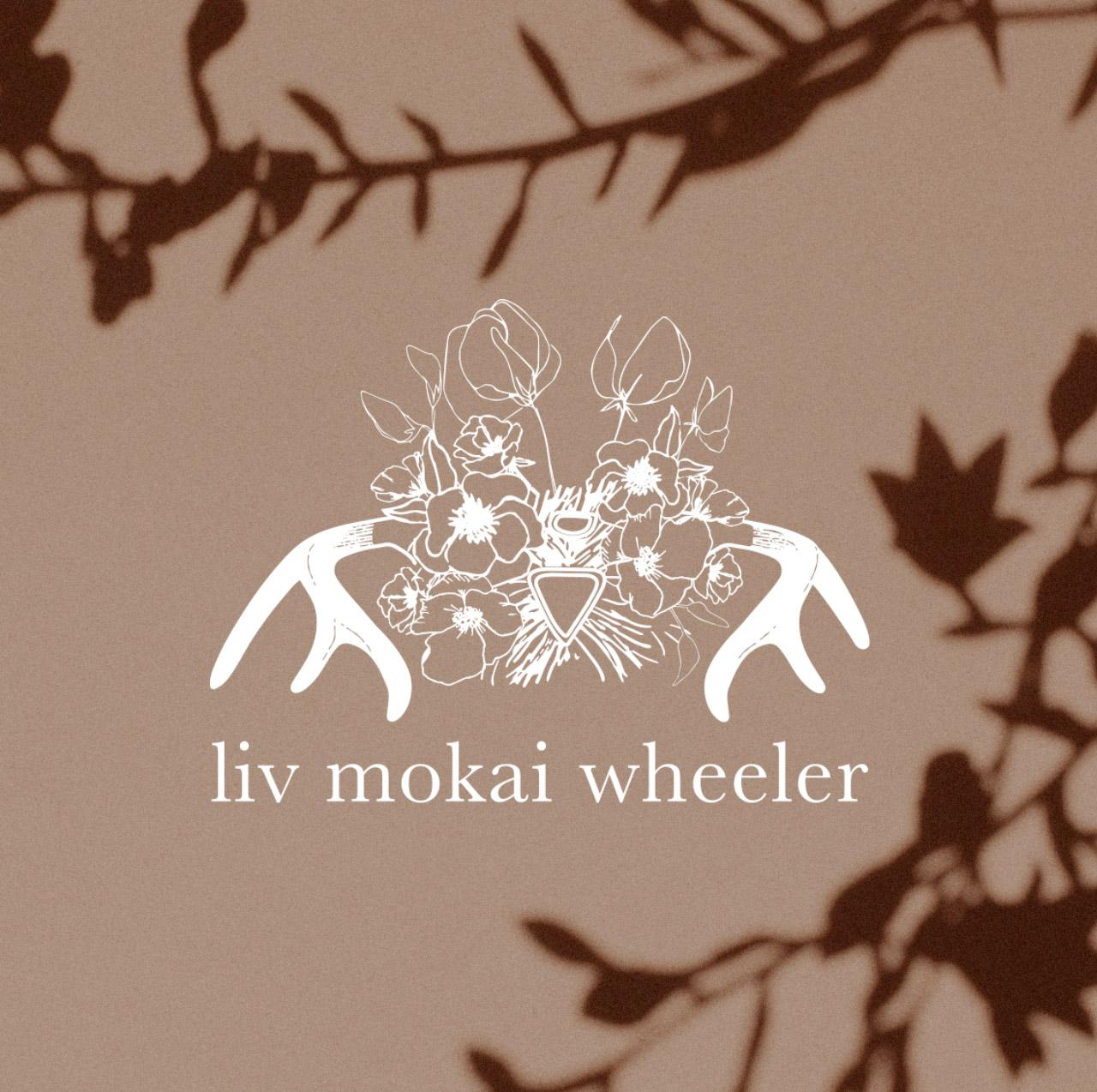 liv-logo.jpg