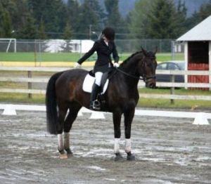 """Blue Beyond,"" 1st schooling show, 2011, 68% Training Level, Vancouver Island."
