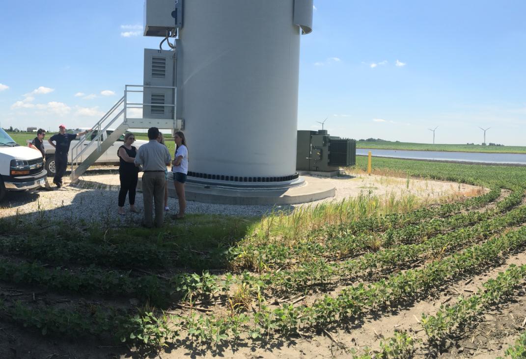 Photo credit   : David Ward @ the American Wind Energy Association.     Location: The 20-turbine, 50 megawatt, Rippey Wind Farm in Iowa.