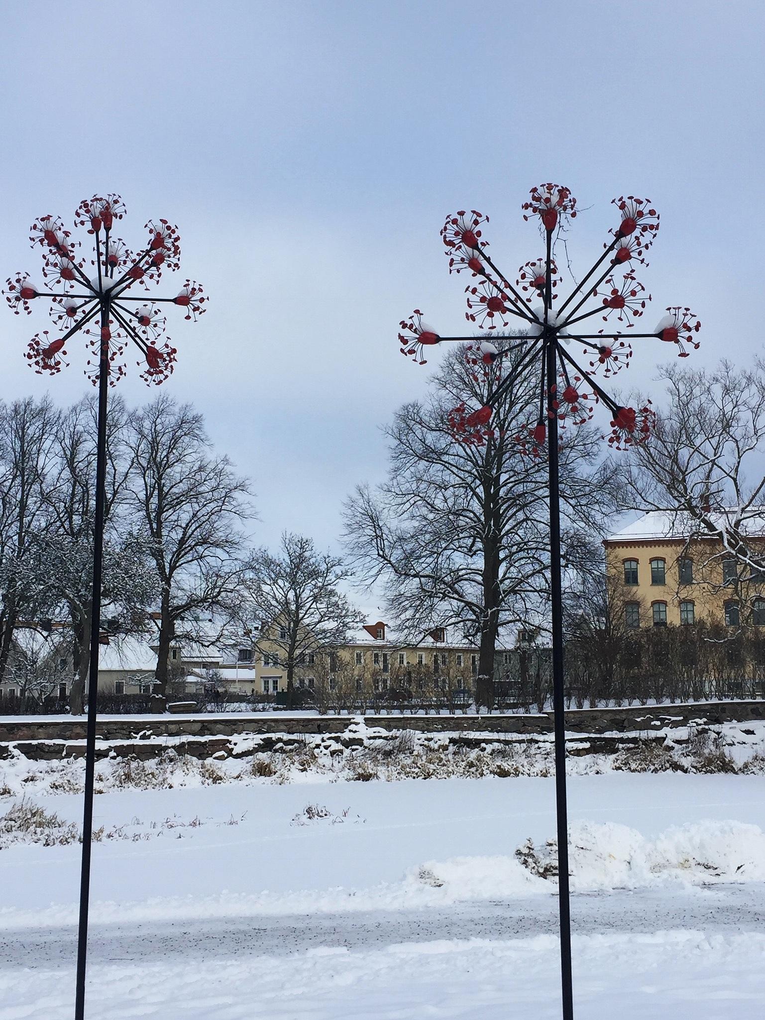 umbel series     jenni ward  mariestad, sweden  photo credit: cecily ferguson, 2019