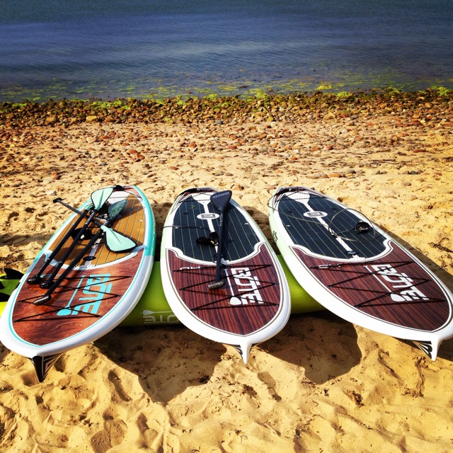 Stand up Paddle boards for rent