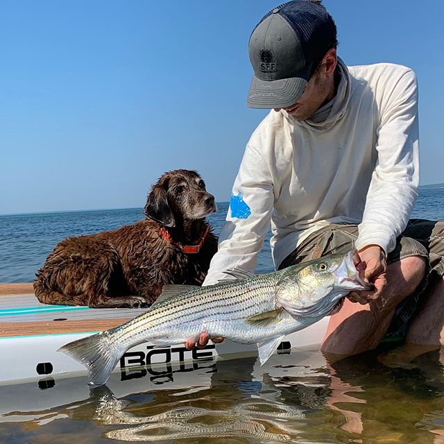 What's better than going fishing with your best friend?  #boteboards #aquinnah #marthasvineyard  #suptours #suprentals