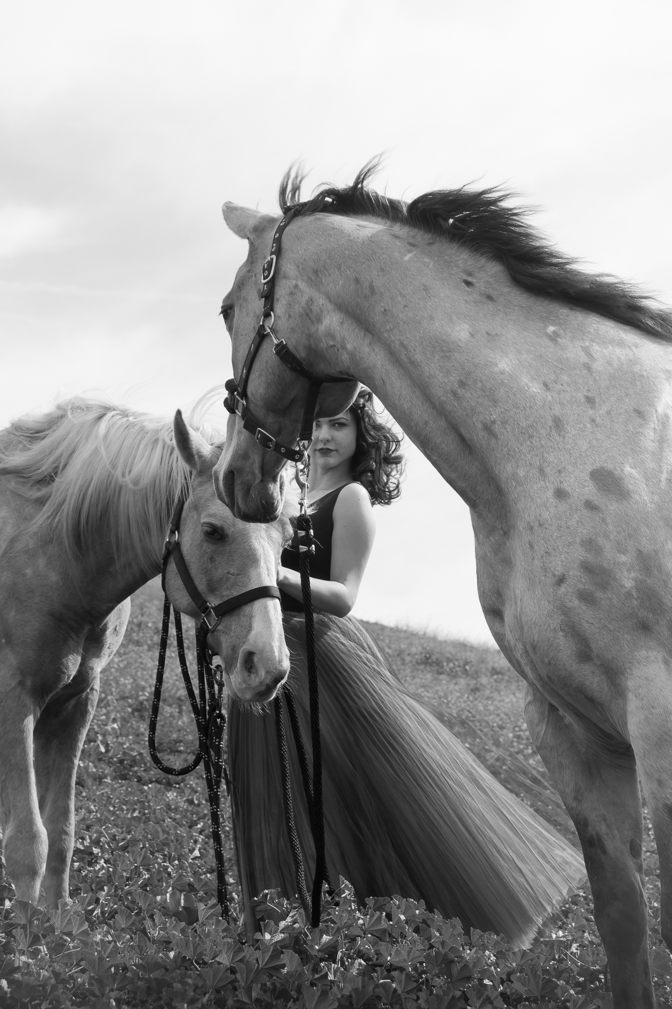 Portland Senior Portrait Photographer Girl with Horses fashion editorial miranda kelton photography