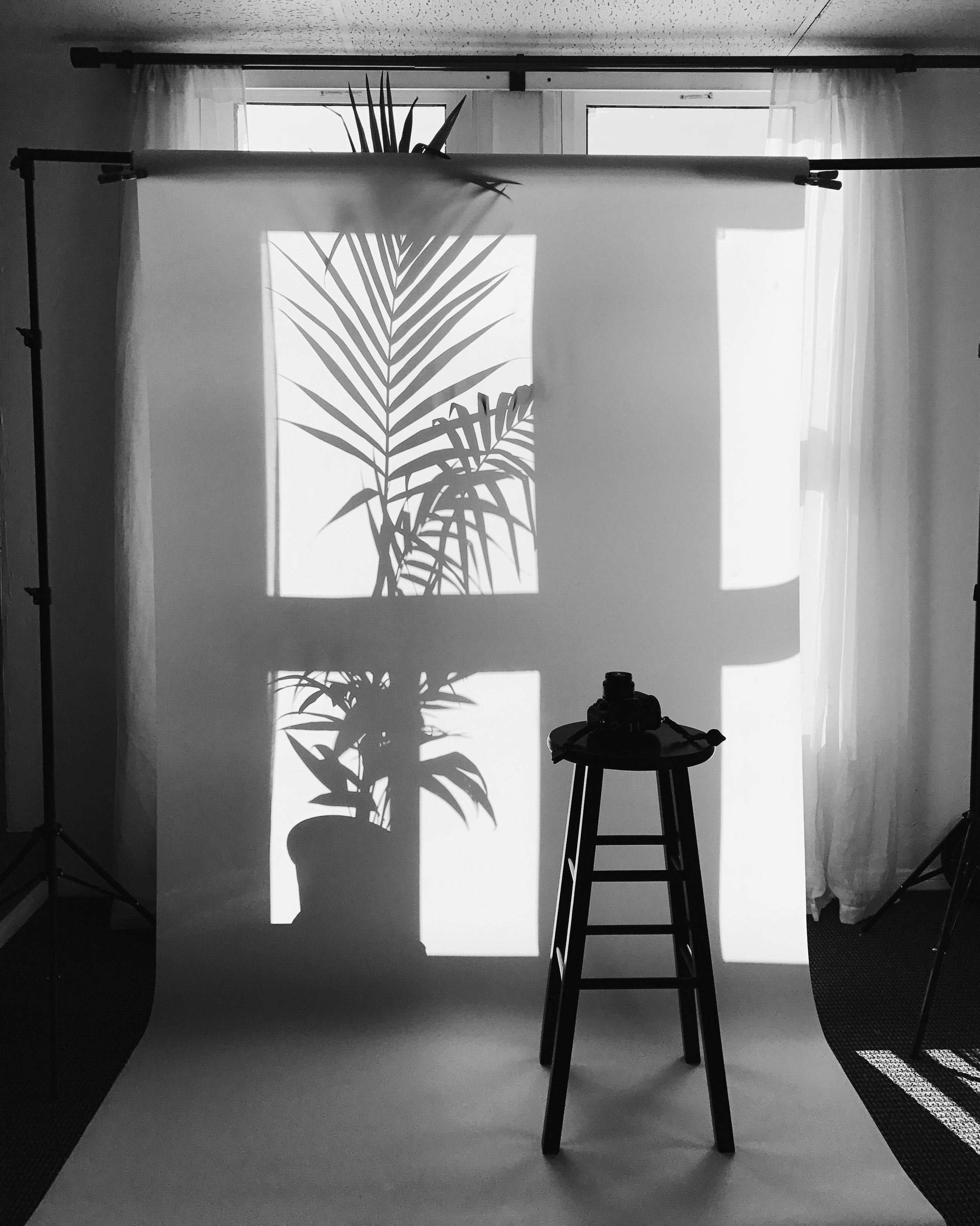 Santa Barbara Studio Photographer Miranda Kelton Photography.jpeg
