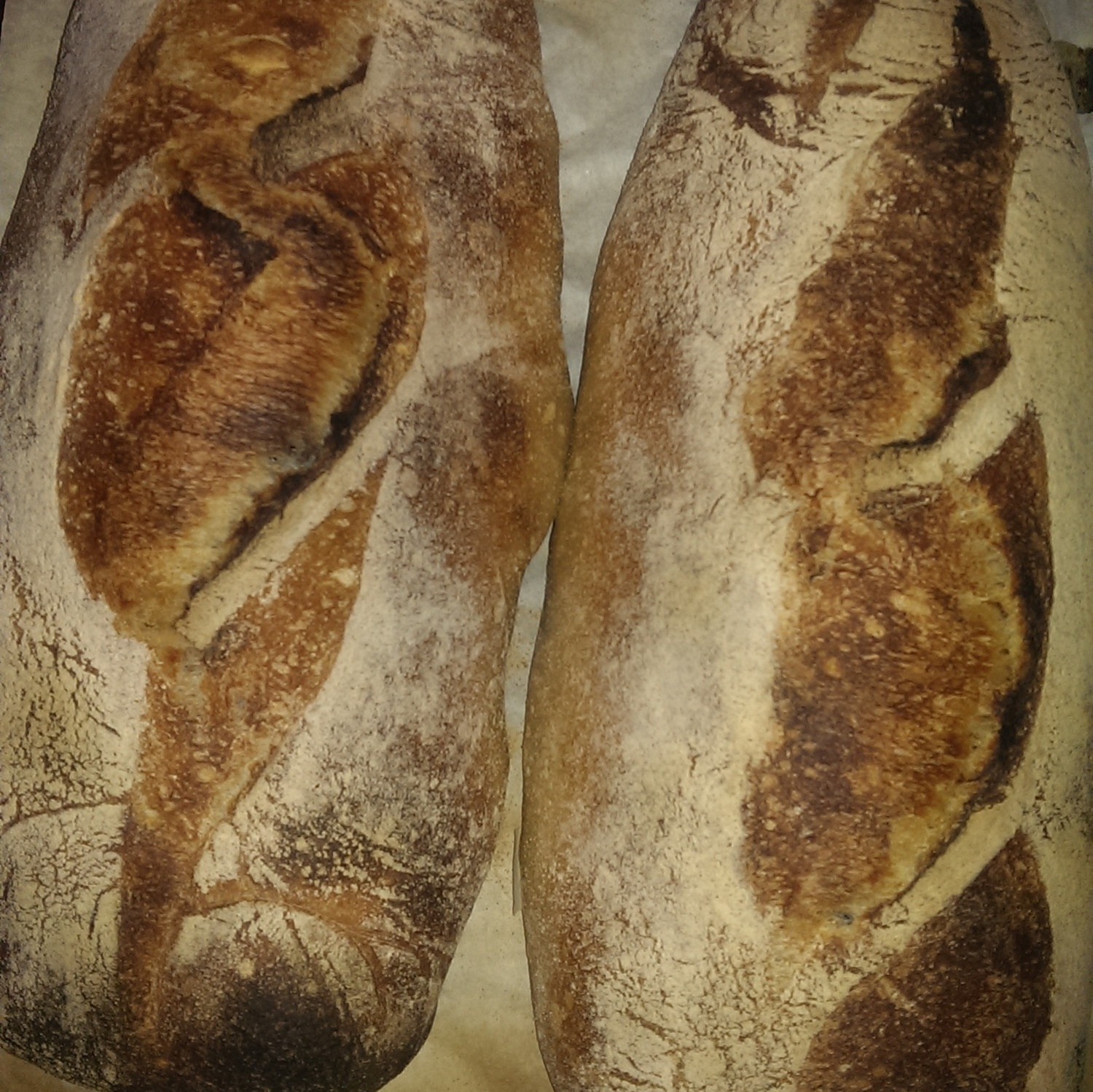 The whole point: Delicious and nutritious daily bread