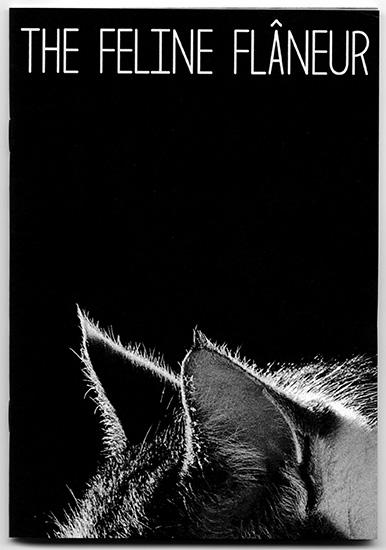 feline flaneur