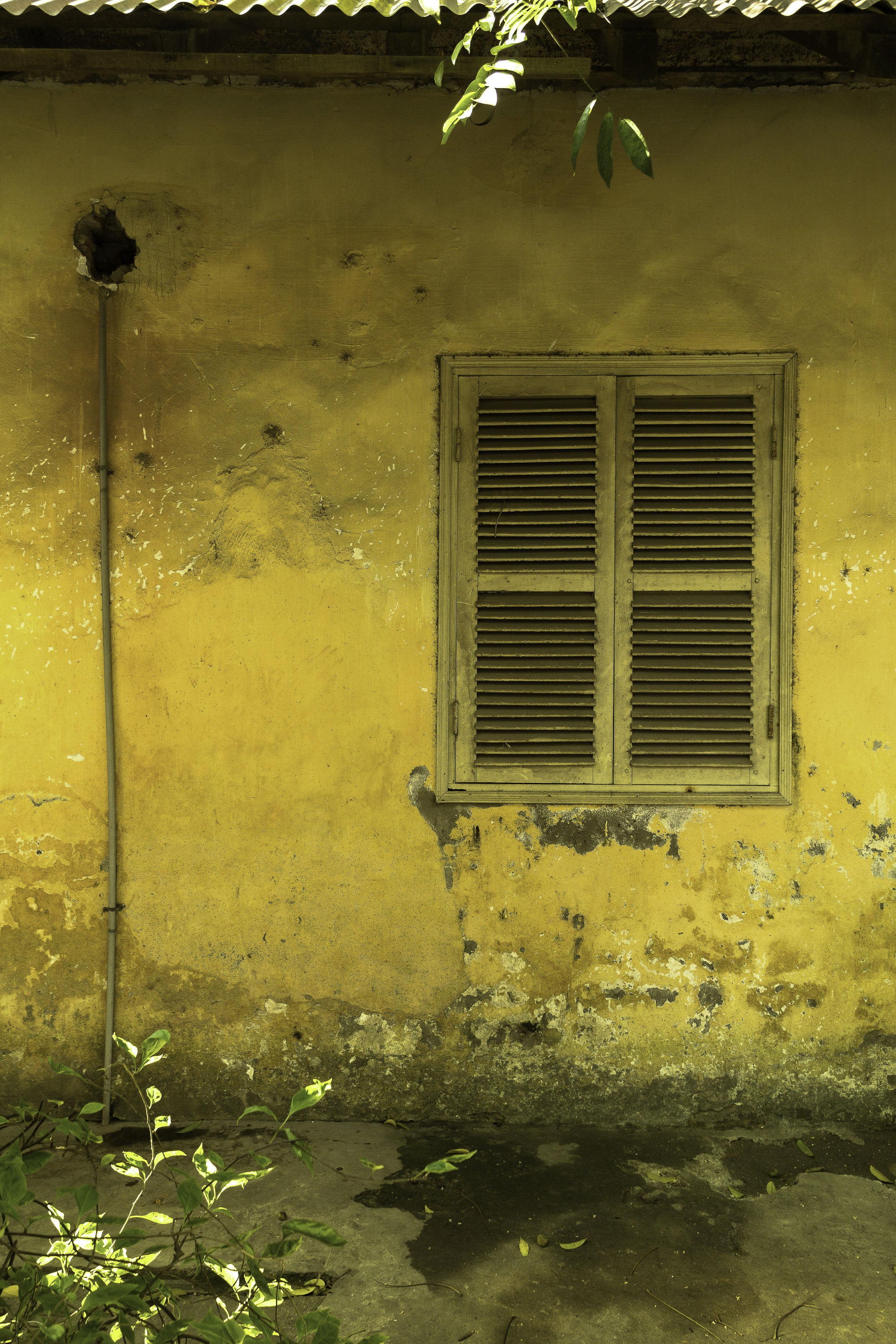 Yellow-wall-in-South-East-Asia.jpg