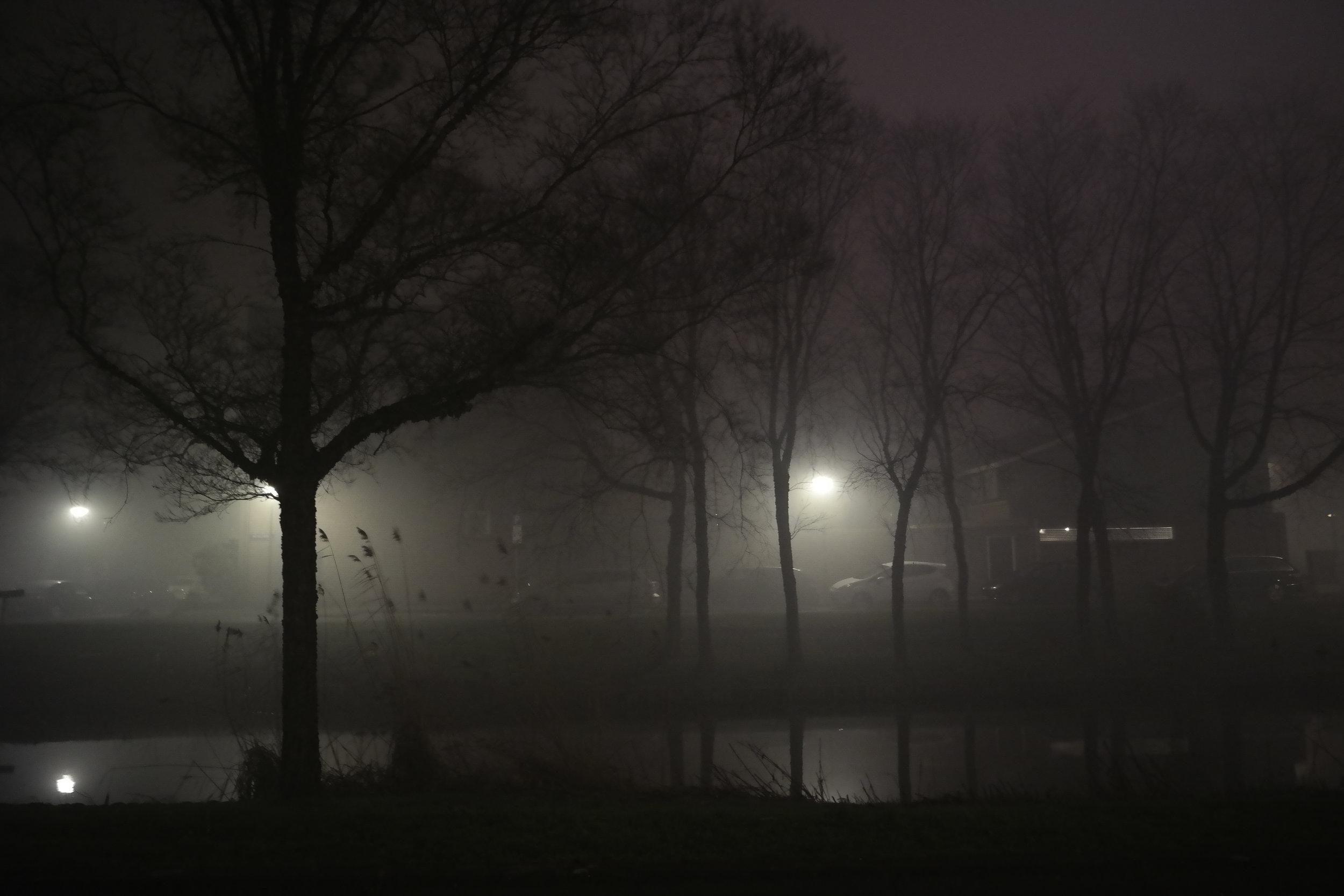 Mystic-fog-New-Years-lights-Amsterdam.jpg