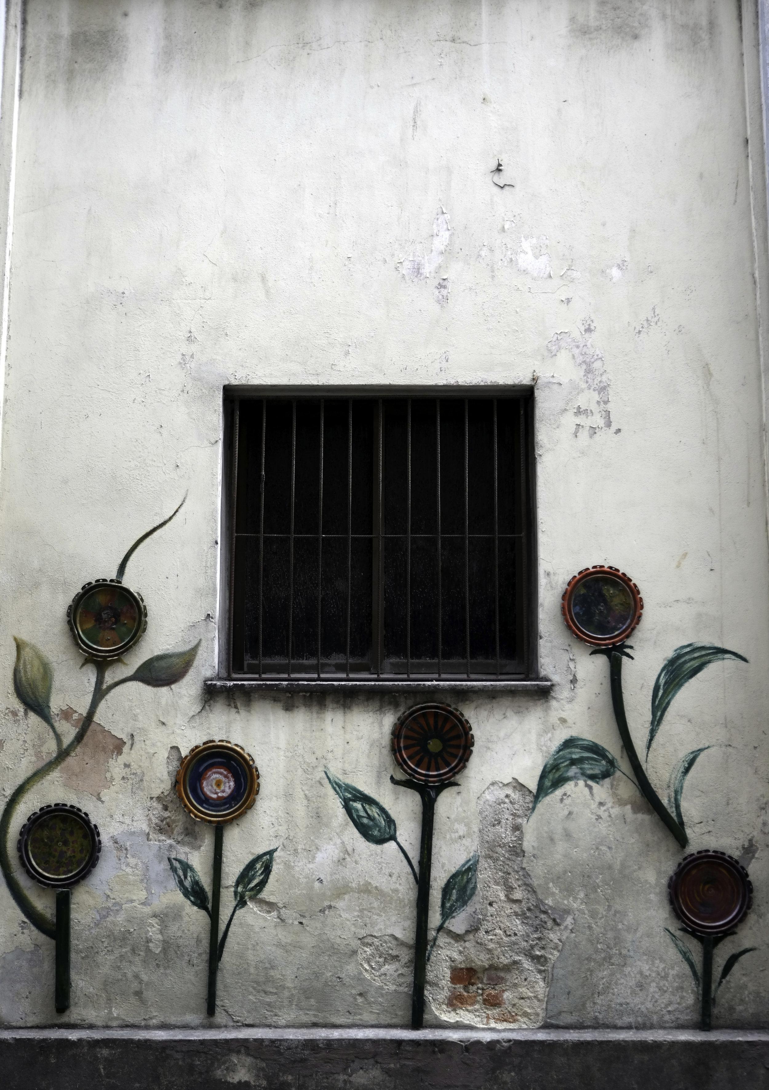 Flowers and a window. Habana, Cuba.jpg