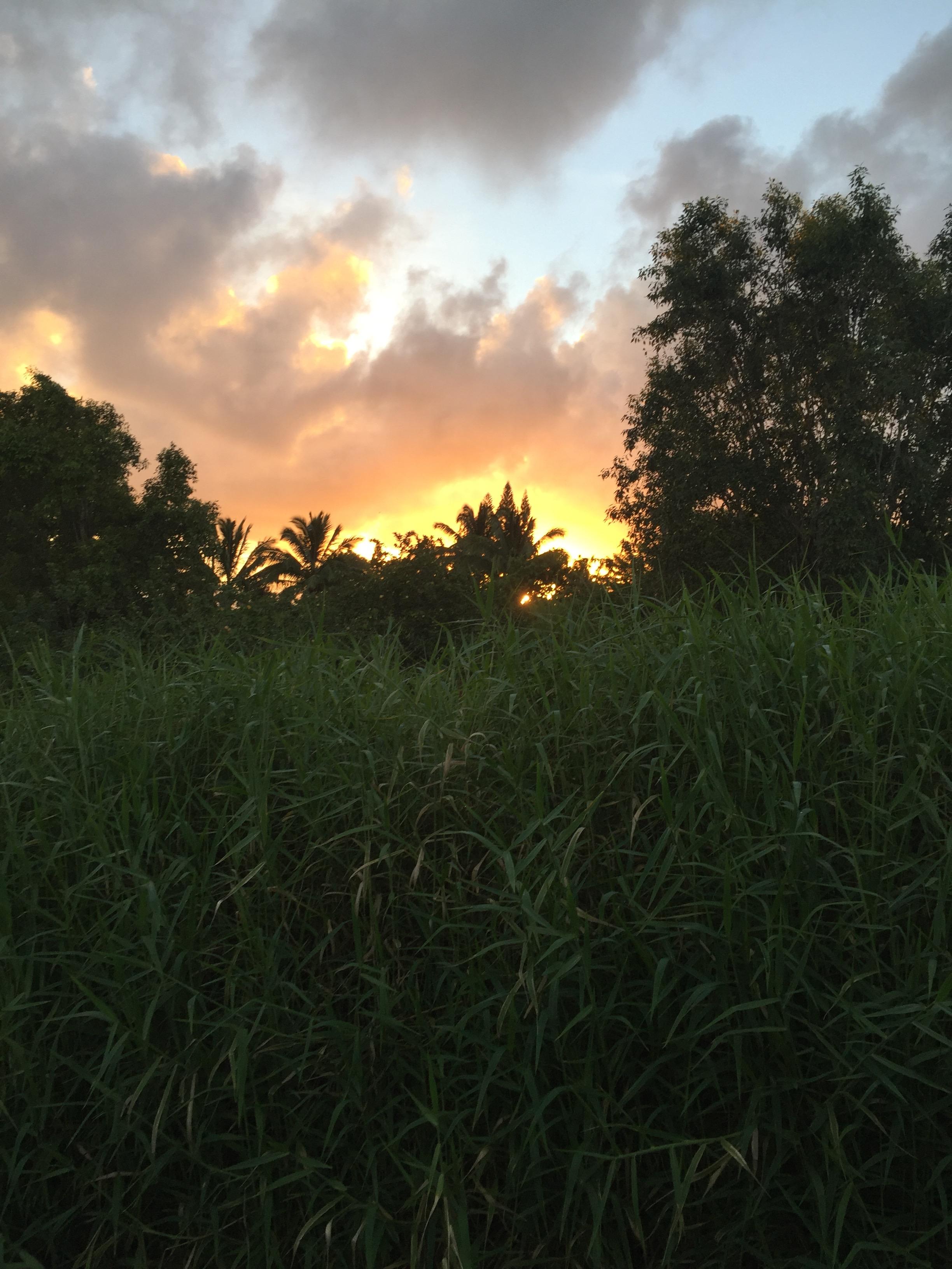 sun rise on Manawai, Maui. strini art glass