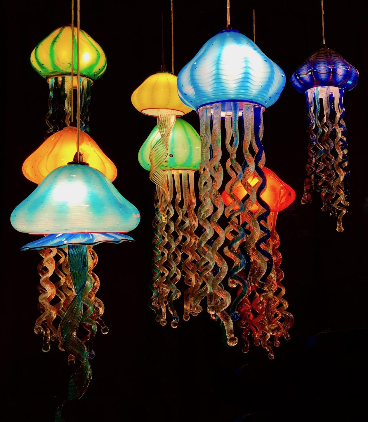 jellyfish group 5:10.jpg
