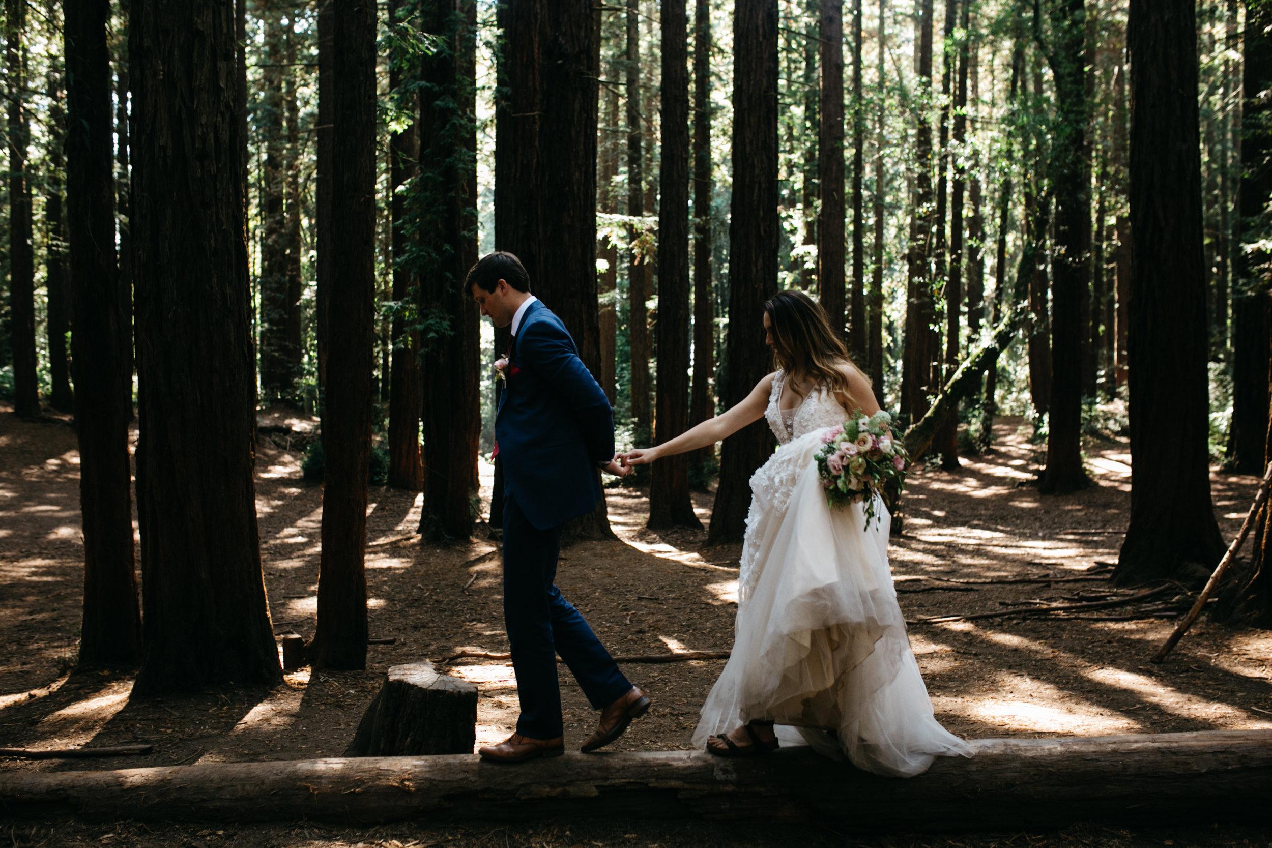 Muir Woods elopement photographer