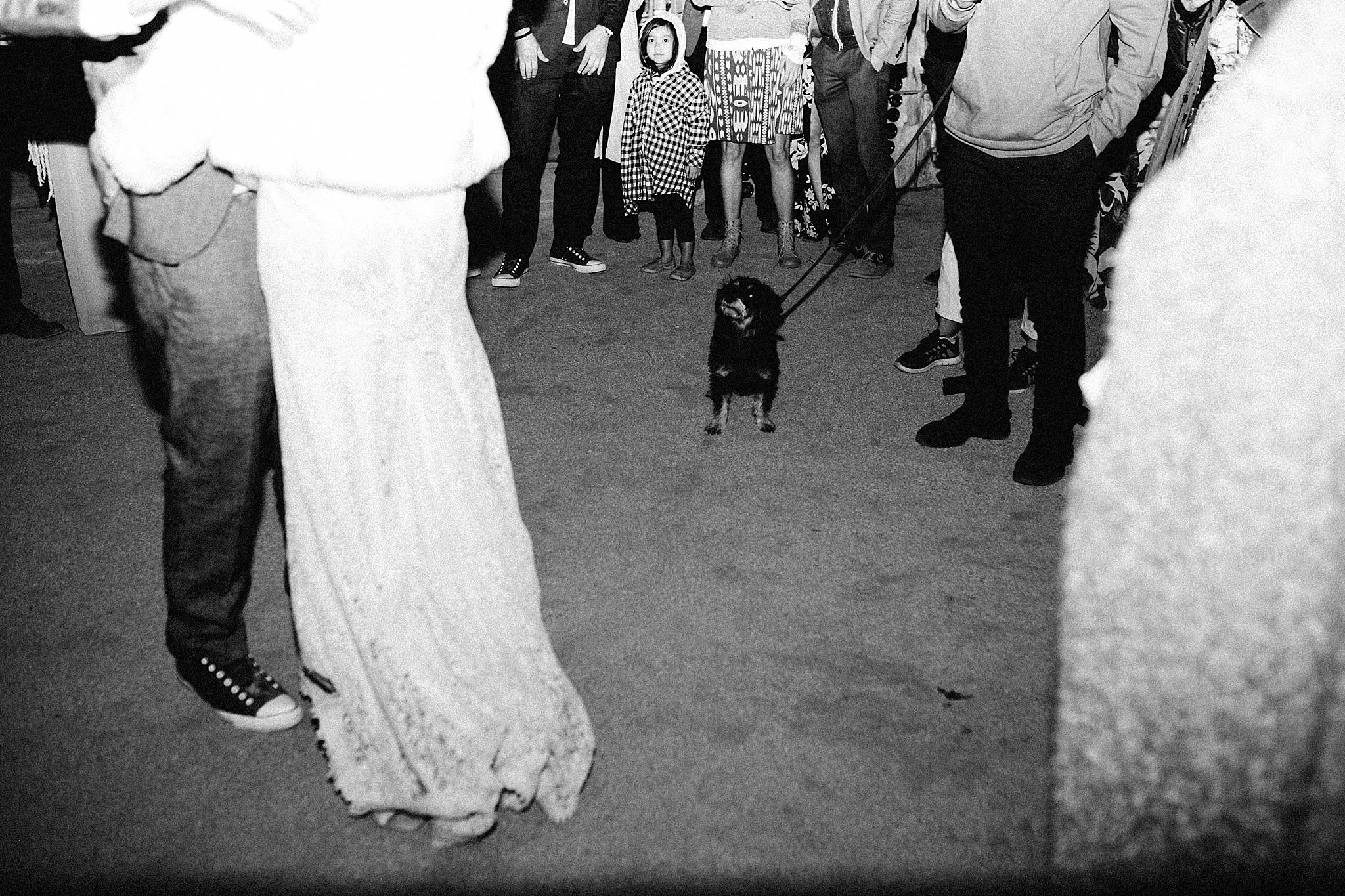 joshua tree wedding photographer // california desert wedding