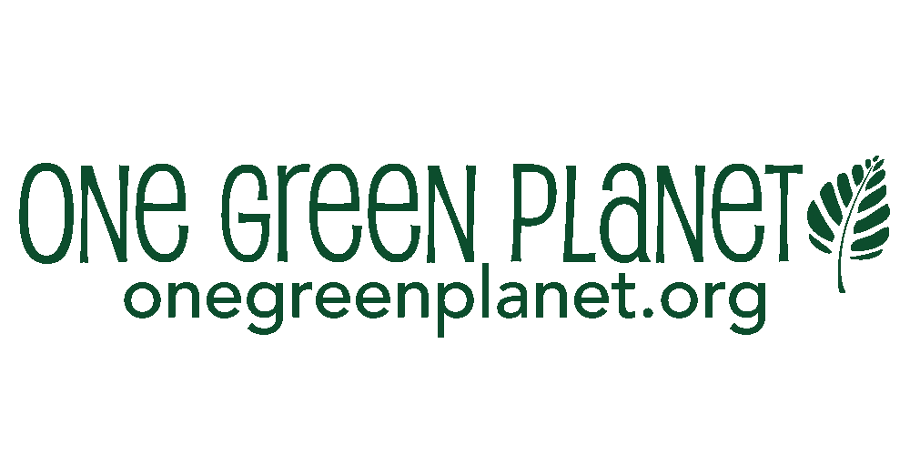ONE GREEN PLANET_horizontal_logo (1).png
