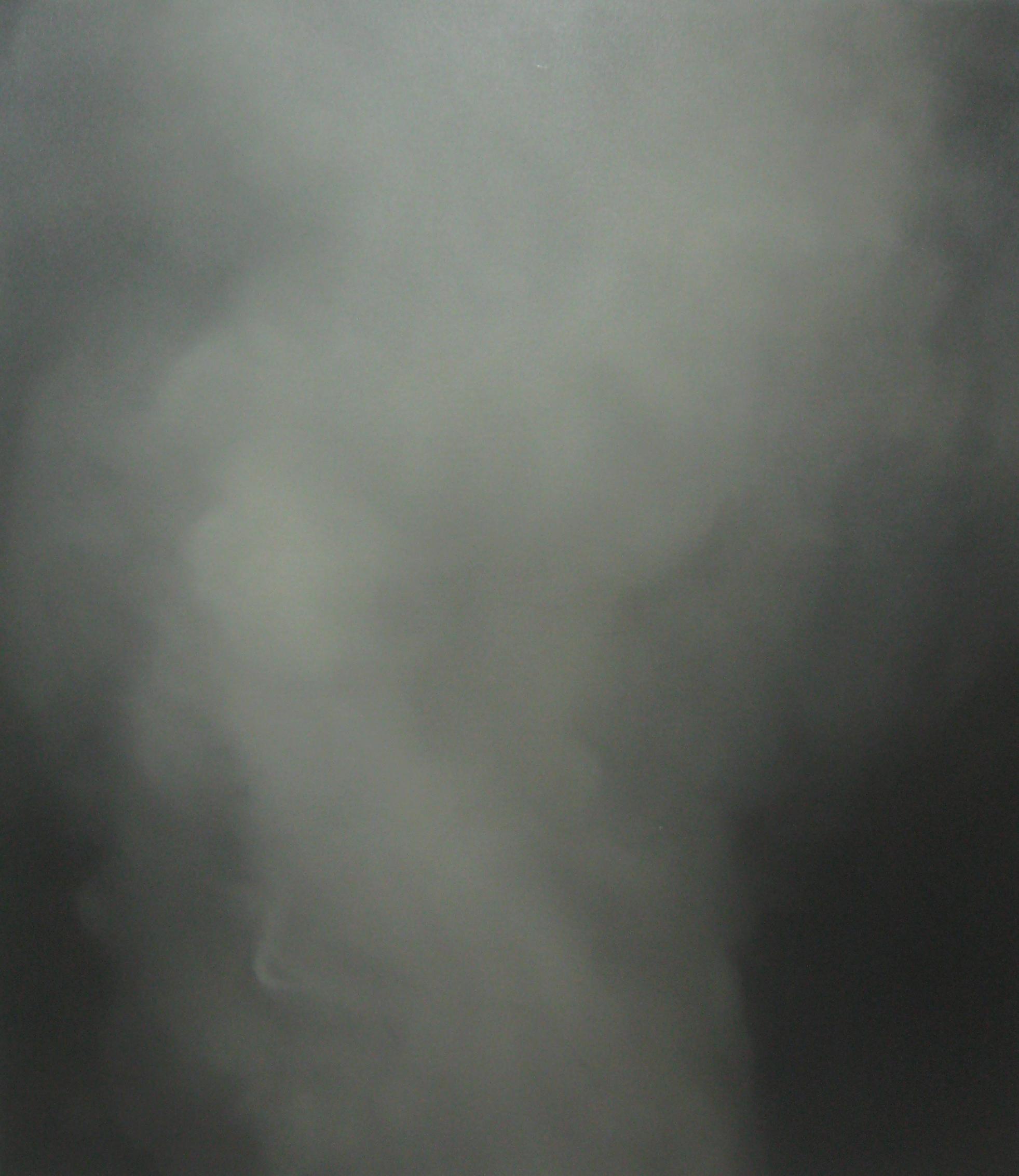 Steam No. 10   2011