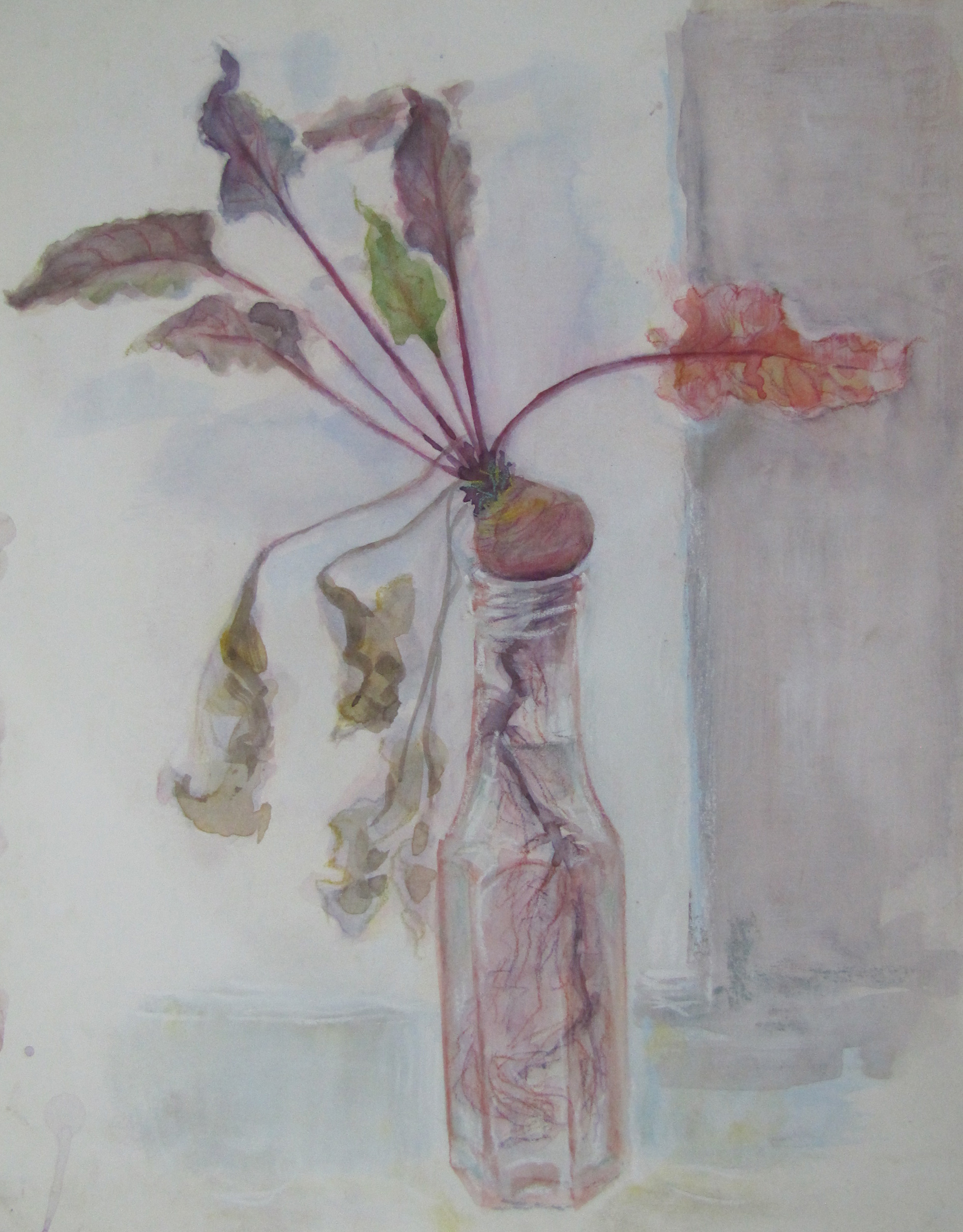 Study – young beetroot in a sauce bottle. 2003.