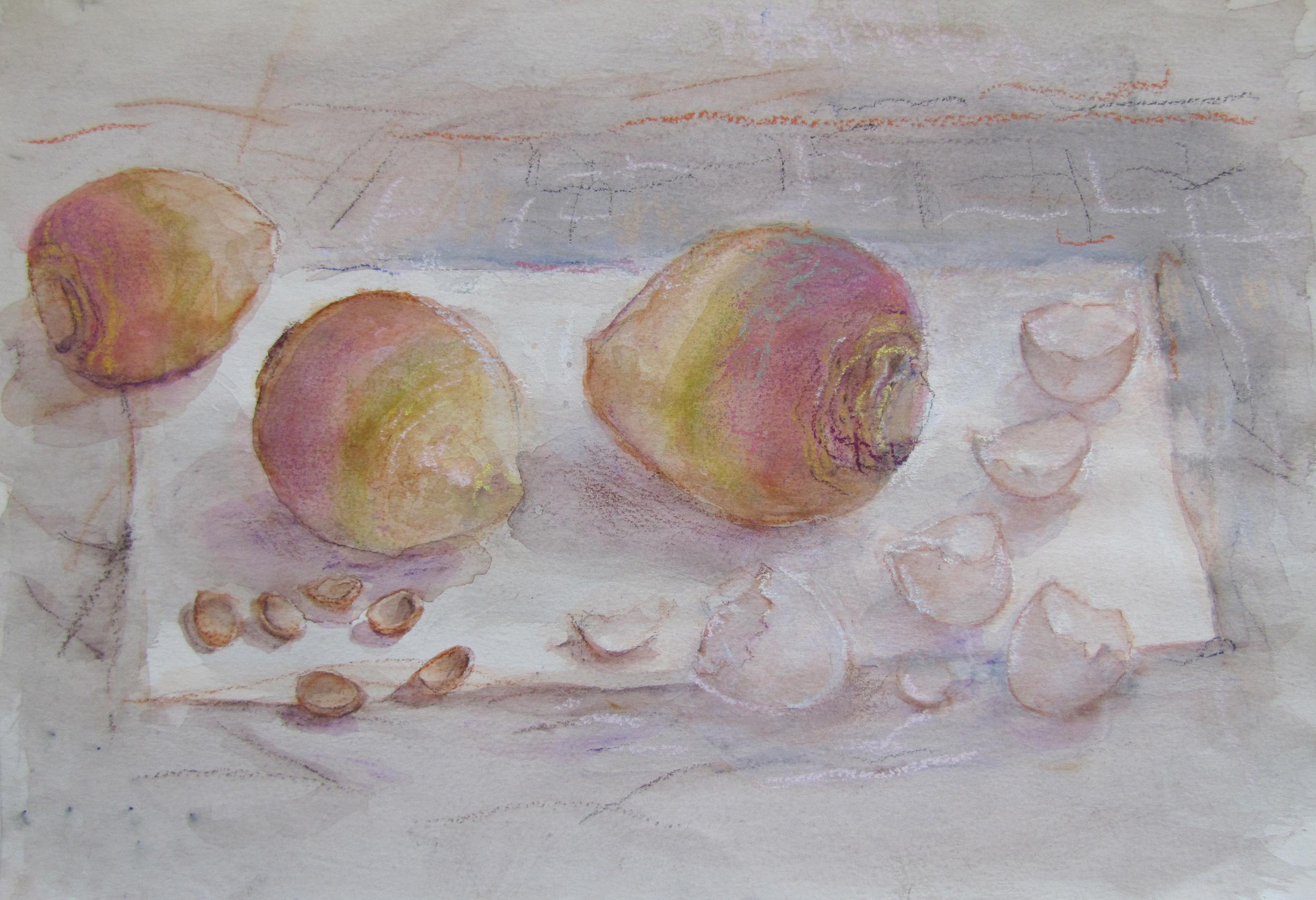 Study - swedes, eggshells and nutshells.  1988
