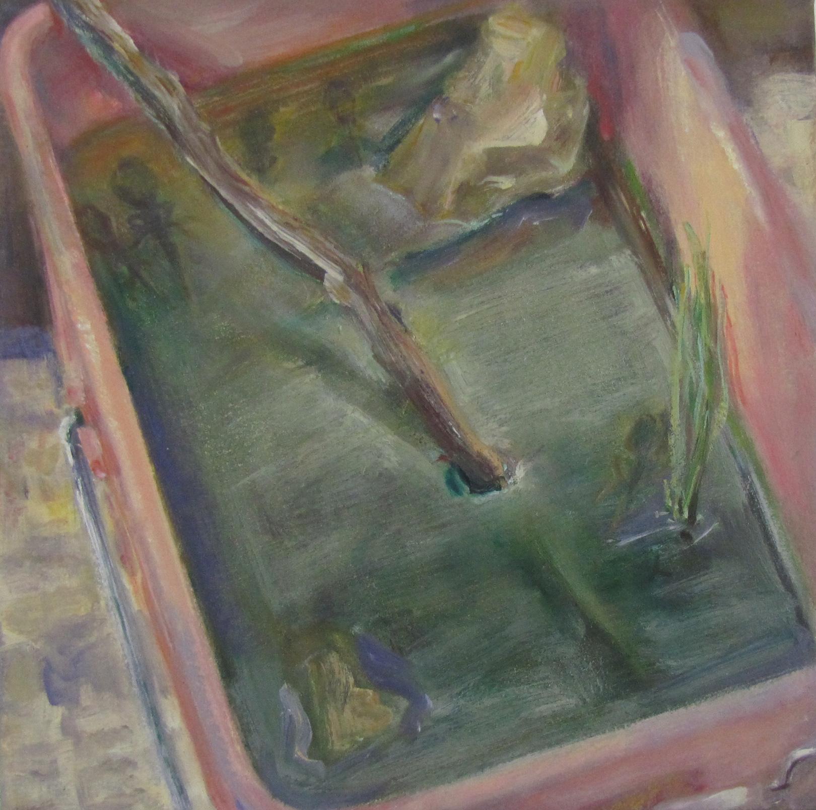 Tadpoles in a bucket.  1995