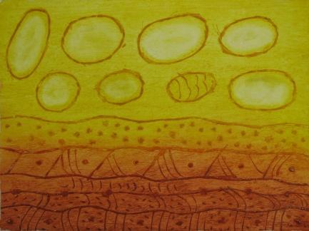 Rolly Mintuma, Walkatjara Art, Uluru