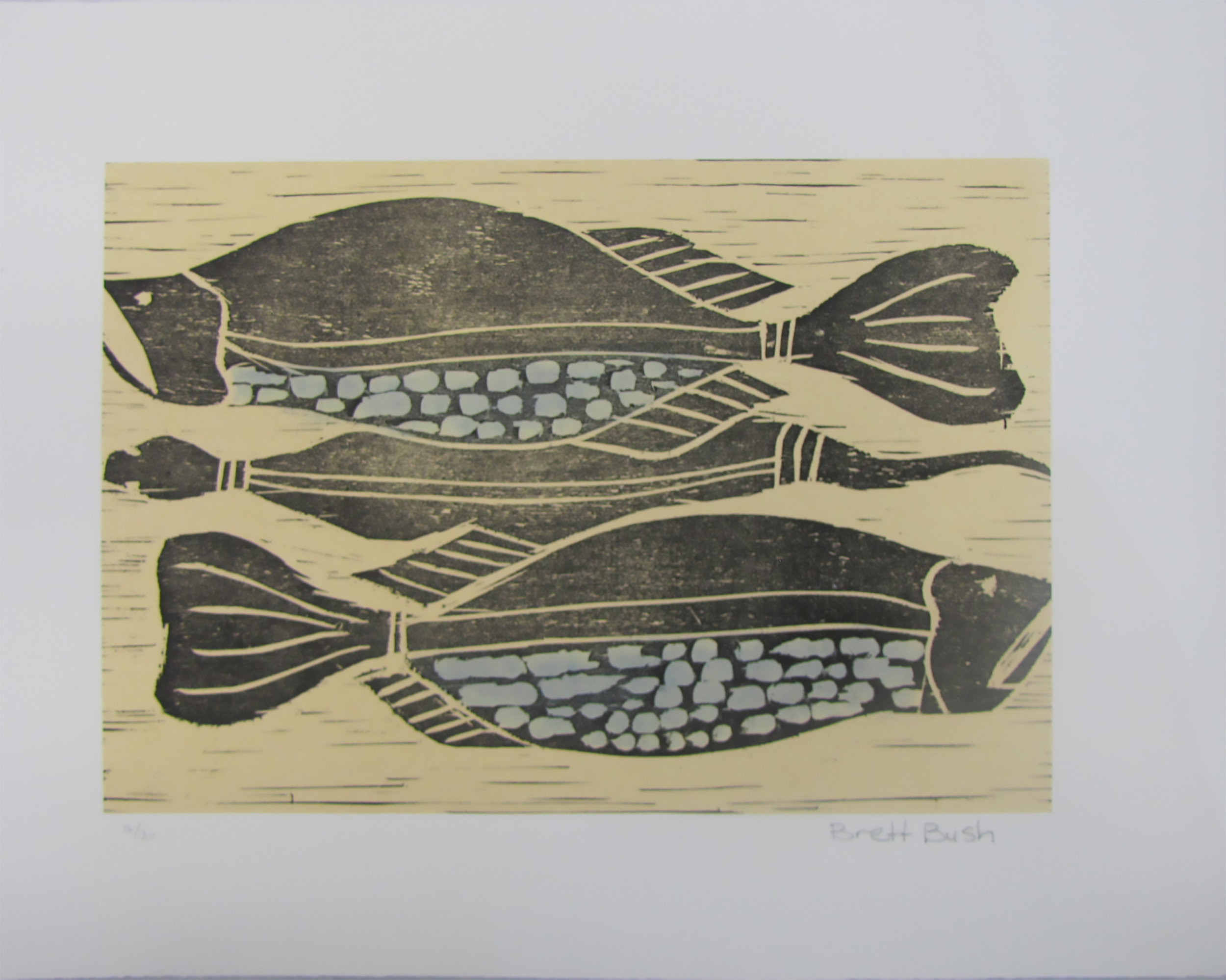 Franki Lane, Fish and Eel. 2016 Etching. Exhibition Proof 19 x 24.5 cm.  $220 unframed Editions 6/30, 8/30, 9/30 & 10/30 (unframed) also available