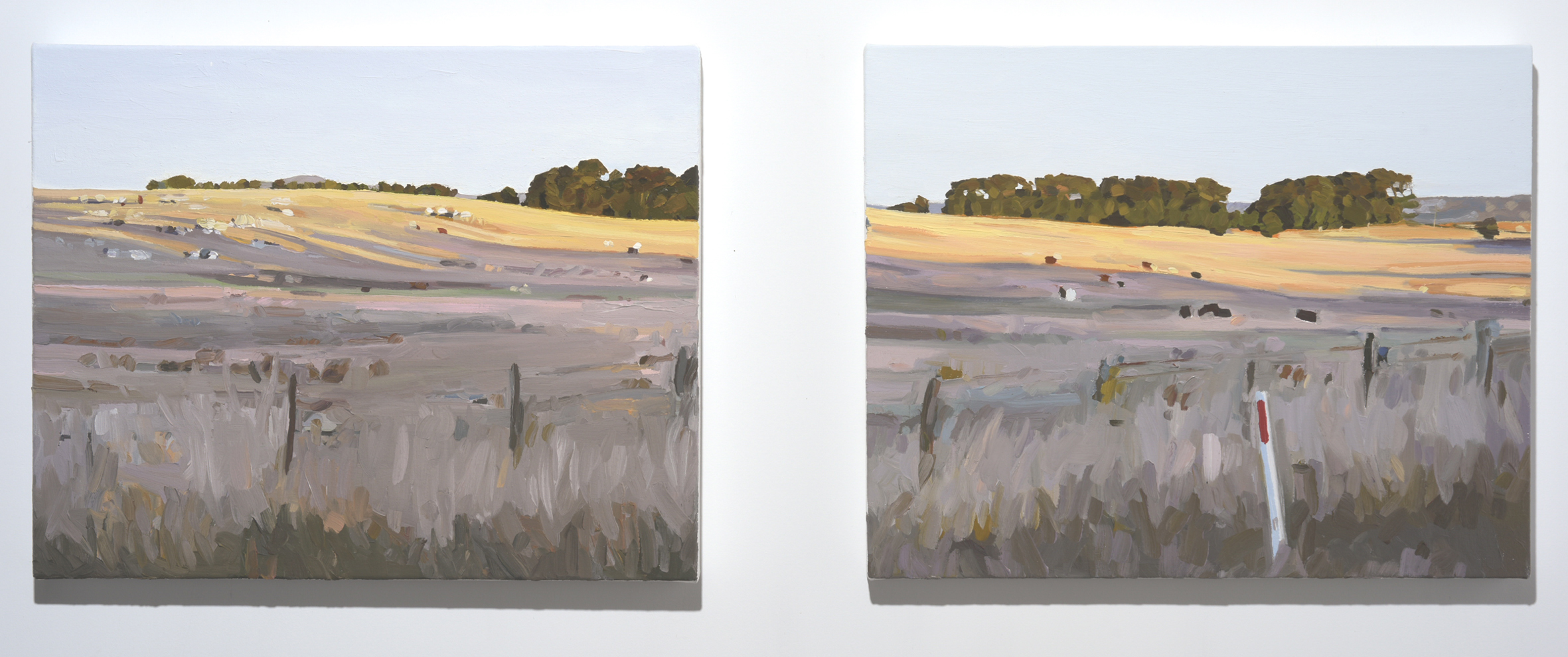 Scenes from an afternoon No.5  2018. Oil on canvas.  2 panels each 40.5 x 51 cm. $2,400 SOLD