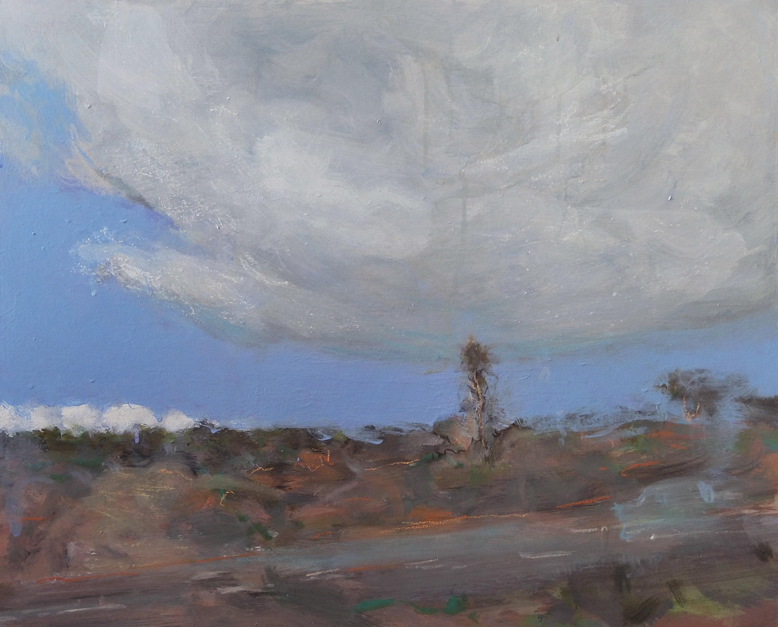 Big Fat Cloud. 2019. Acrylic on birch wood panel. 50 x 60 cm.$3,500 SOLD