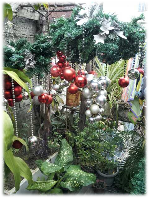Some put up Christmas lights and baubles in the garden.png