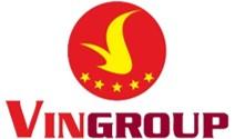 InsightAsia client VinGroup