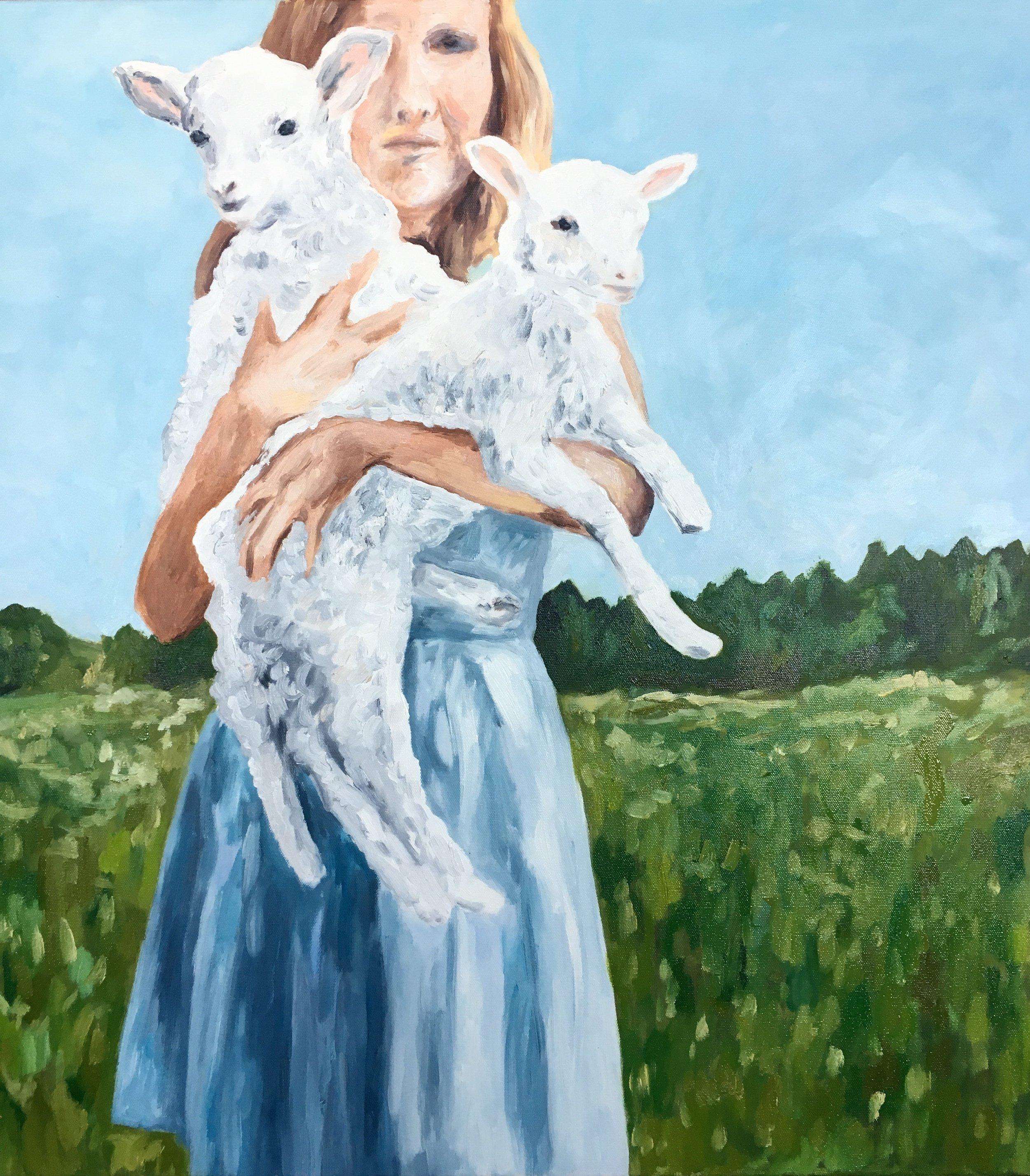 lambs, 30 x 30