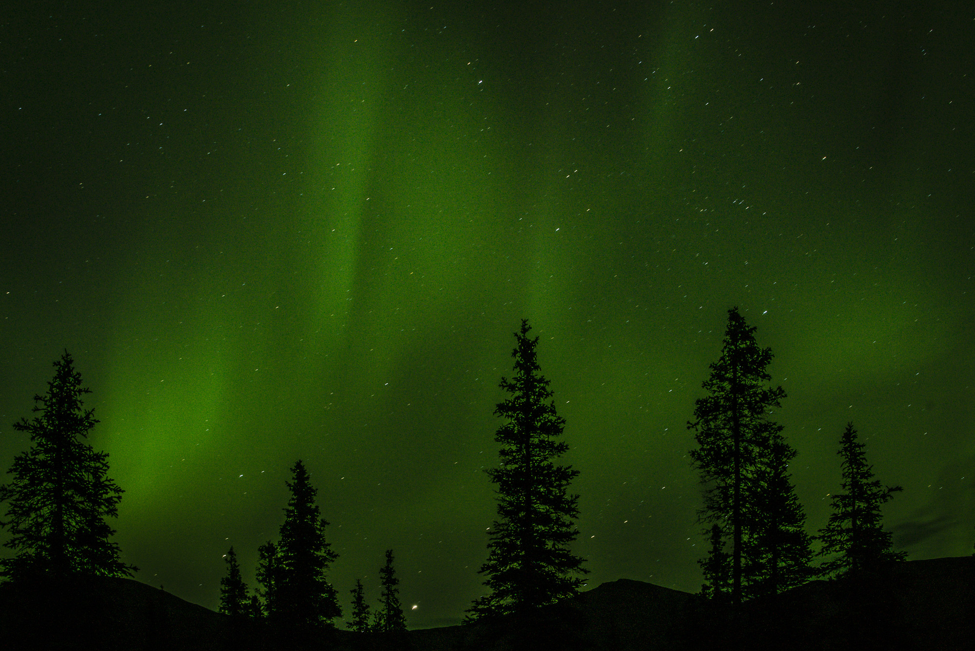 LupinBay-Alaska-Northern Lights-2219.jpg
