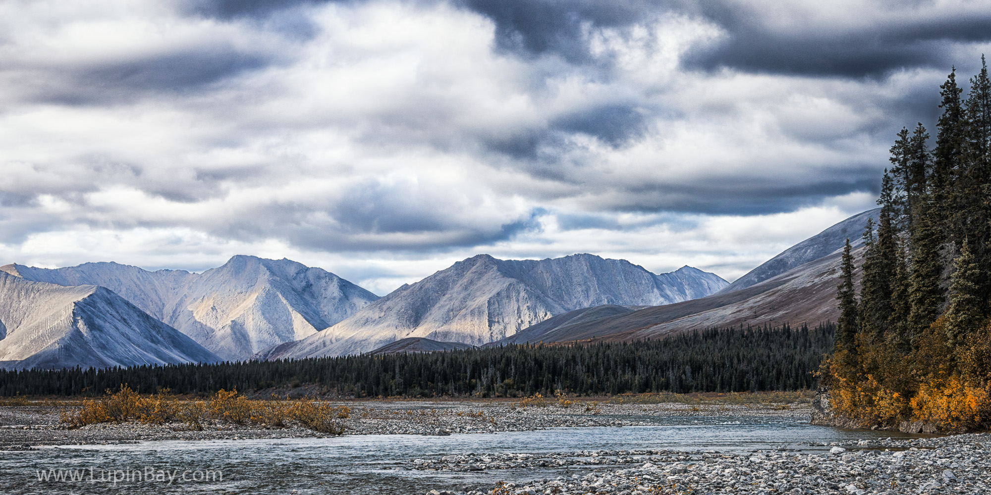 LupinBay-Alaska-2198.jpg