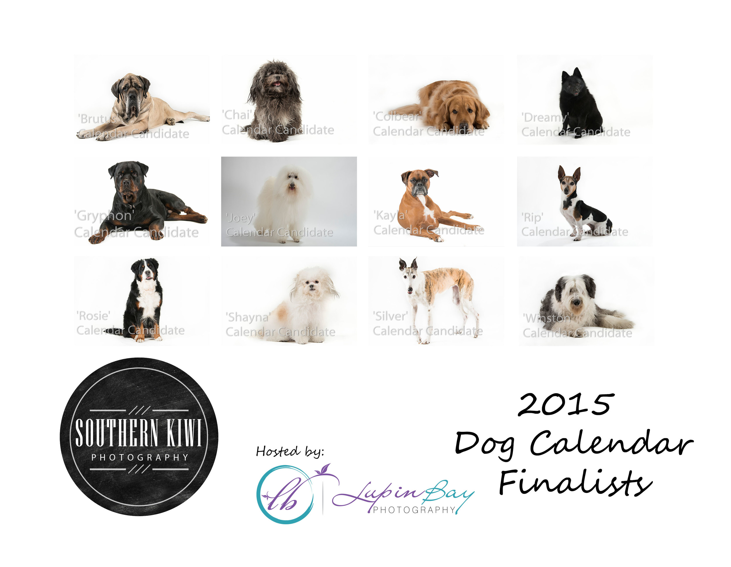 2015-Dog-Calendar-Back-View