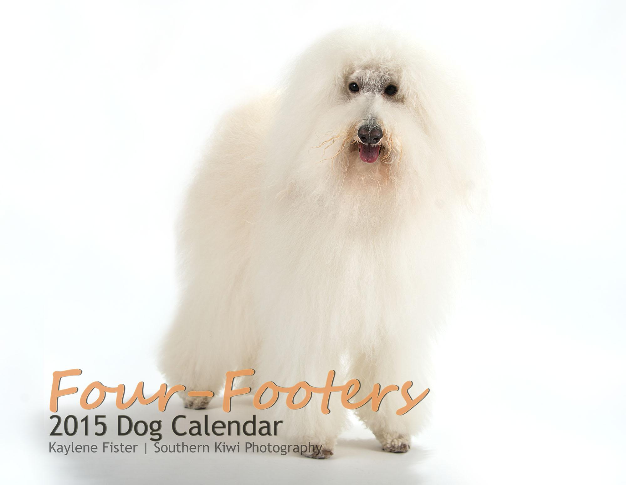 2015 Dog Calendar Front Cover.jpg